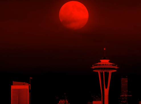 Walking Shadow - by JackA Vampire: the Masquerade chronicleBlood, ash, and backstabbing in SeattleListenWatchImage: unknown
