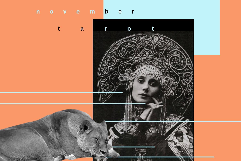 november tarot, strength, nine of pentacles, susan miller, tarot, astrology, rider waite, the kitten life