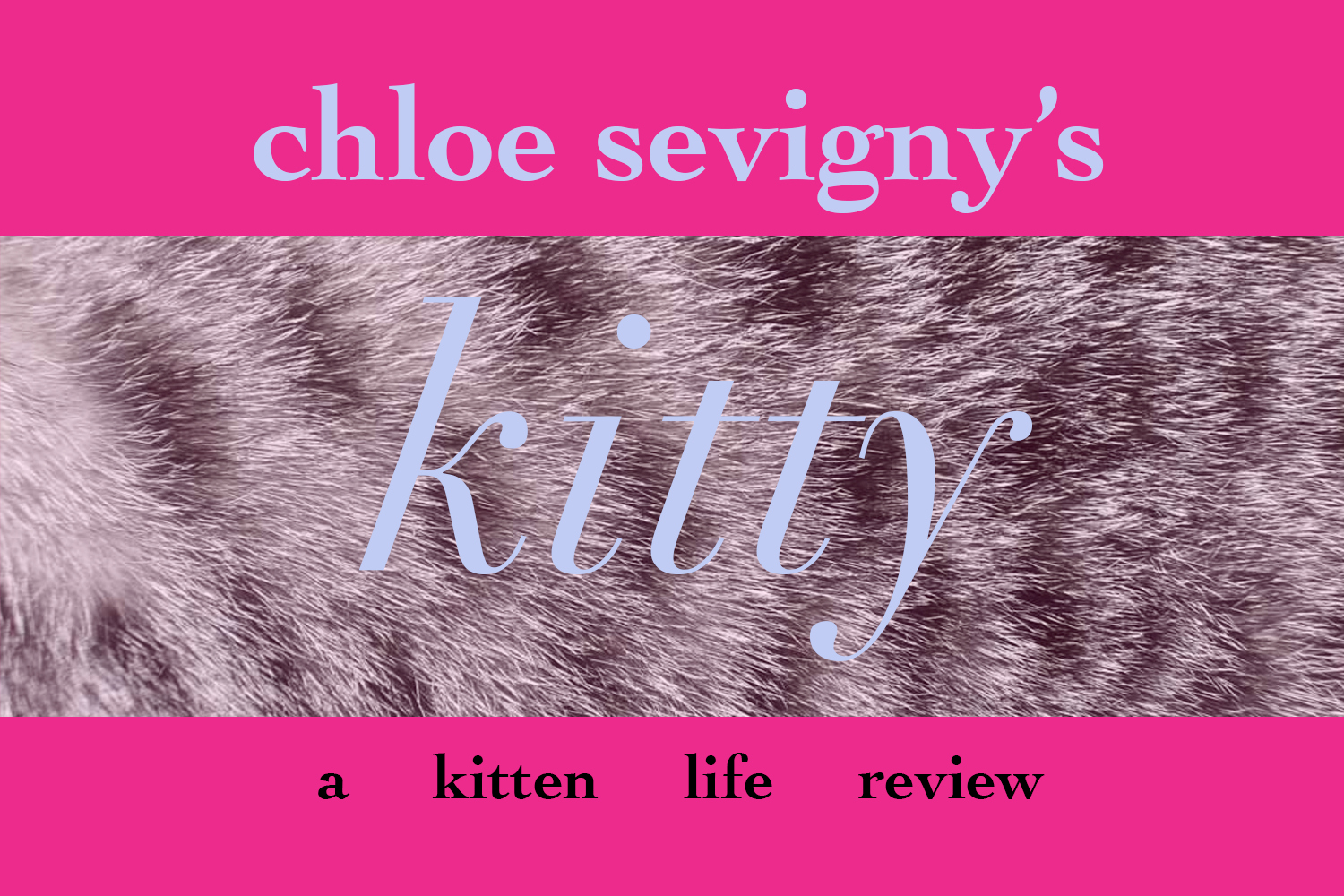 kitty, chloe sevigny, shatterbox film, kitty by chloe sevigny