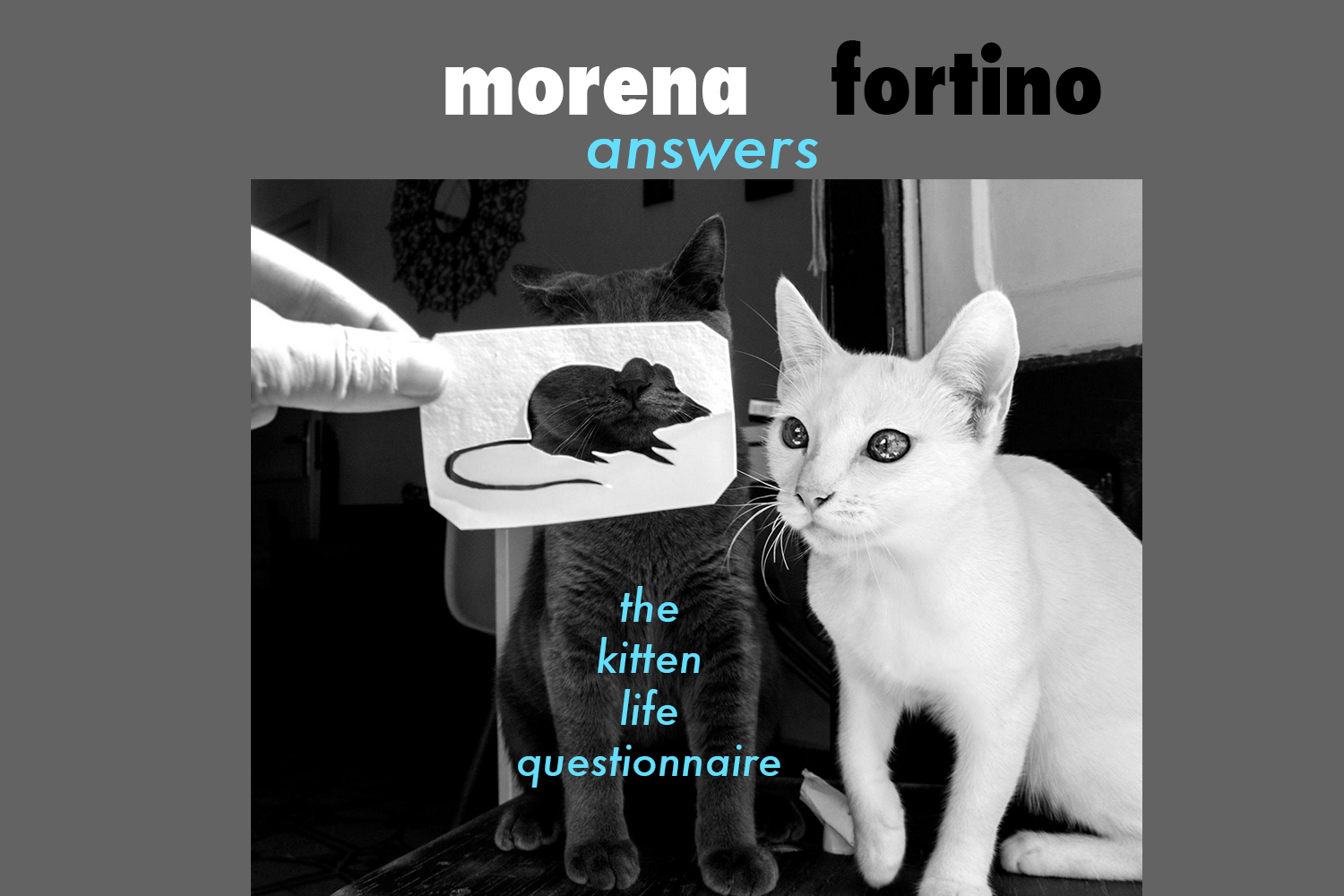 morena fortino, la chatte, fantastic bestiary, proust questionnaire, the kitten life, canadian blogger