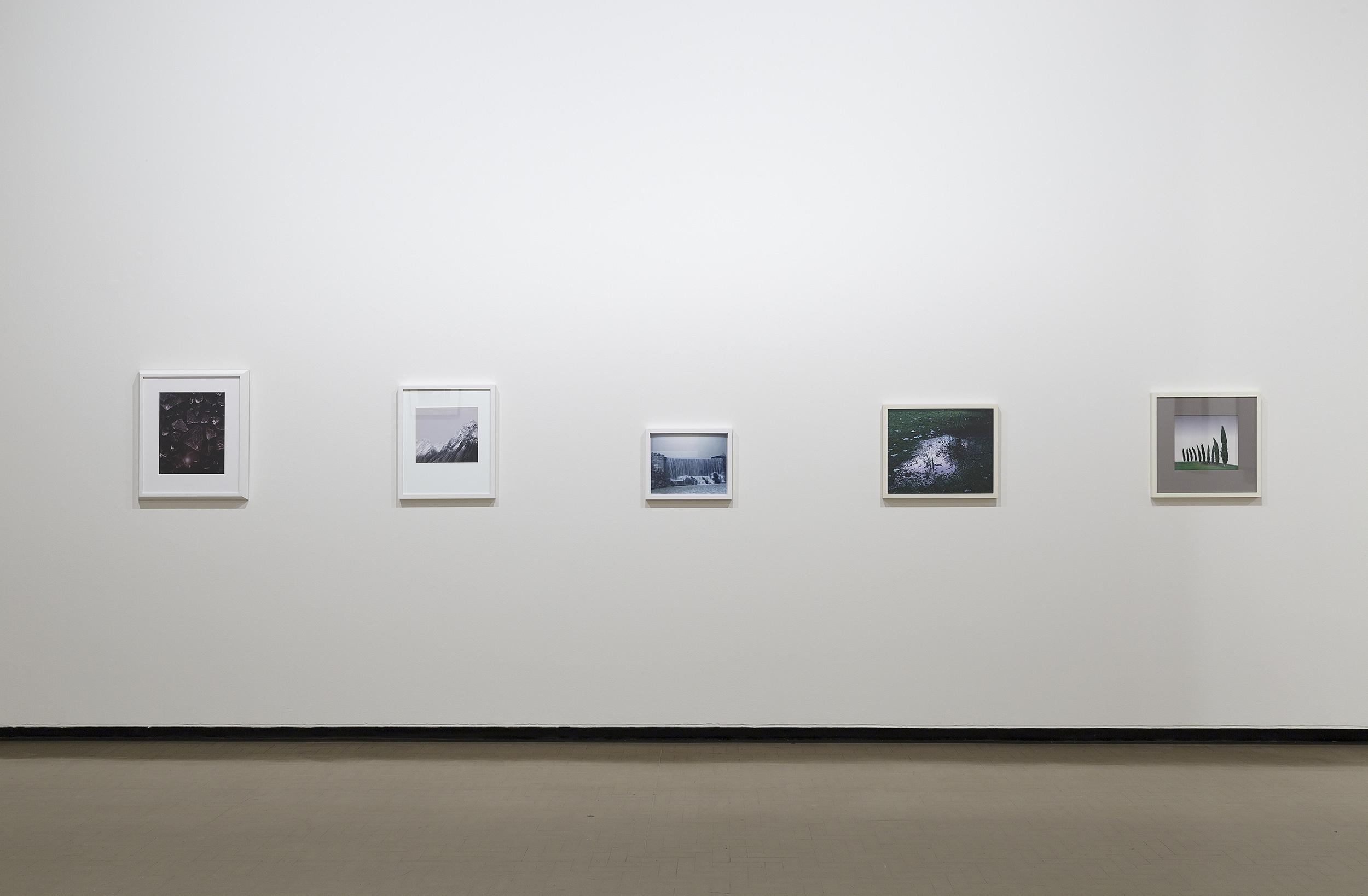City Gallery_Yvonne Todd_Creamy Psychology_documentation_hiRez_002.jpg