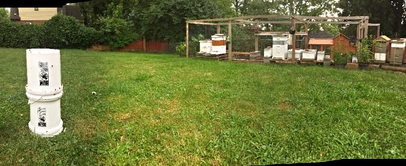 DIY Honey Bee Feeder
