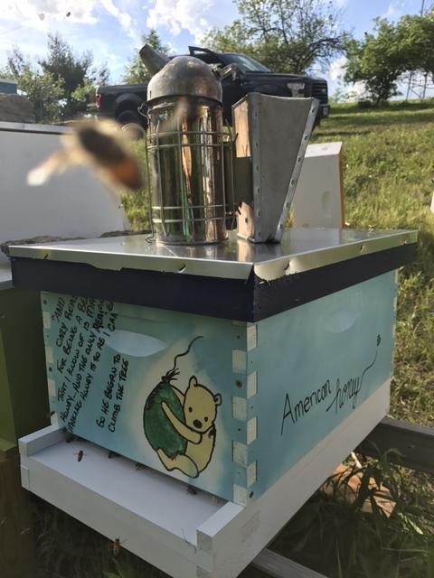 Host A Hive Gaiser Bee Co Cincinnati Ohio