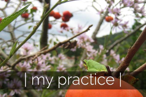 my practice