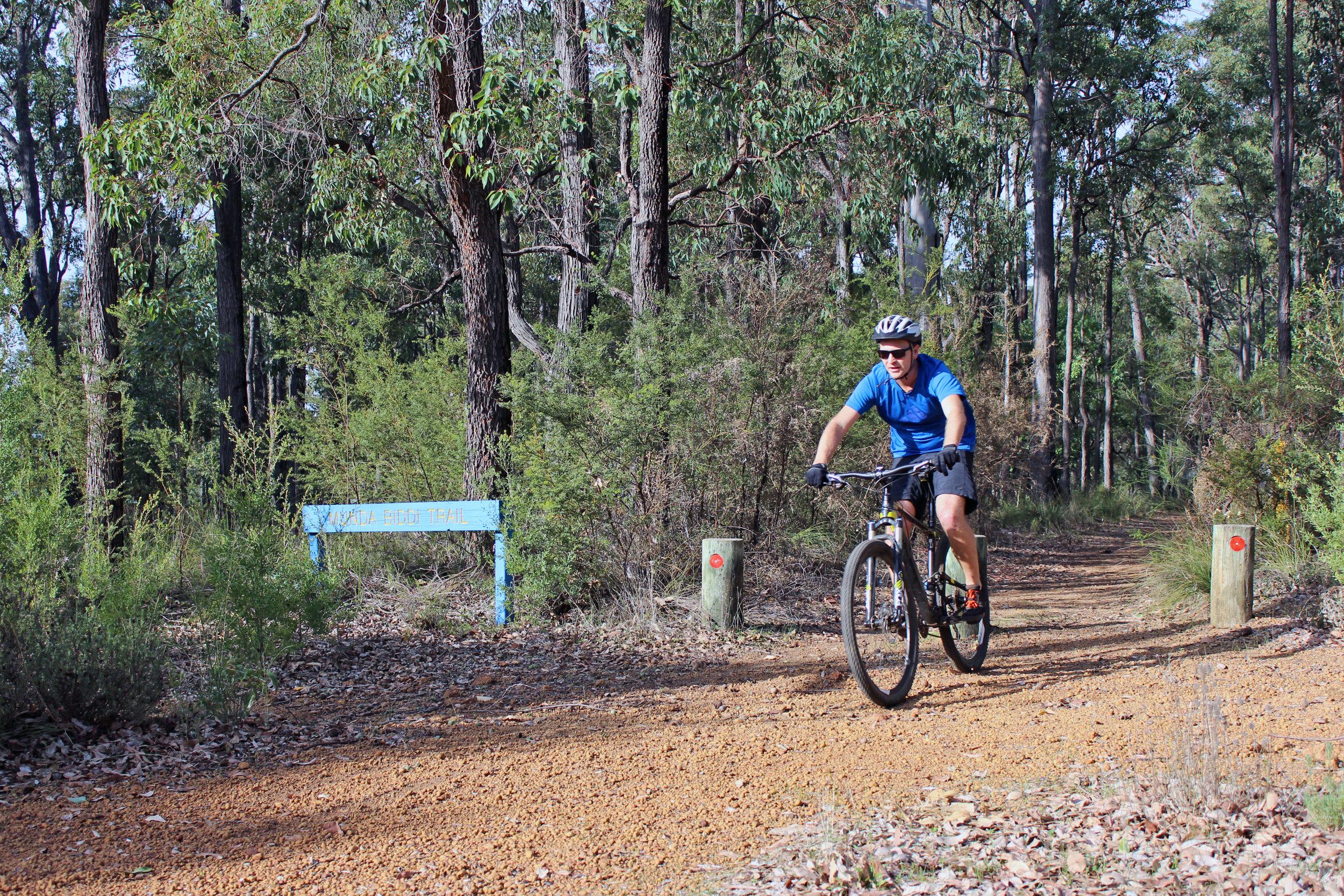 Mountain biking in Jarrahale (3).jpg