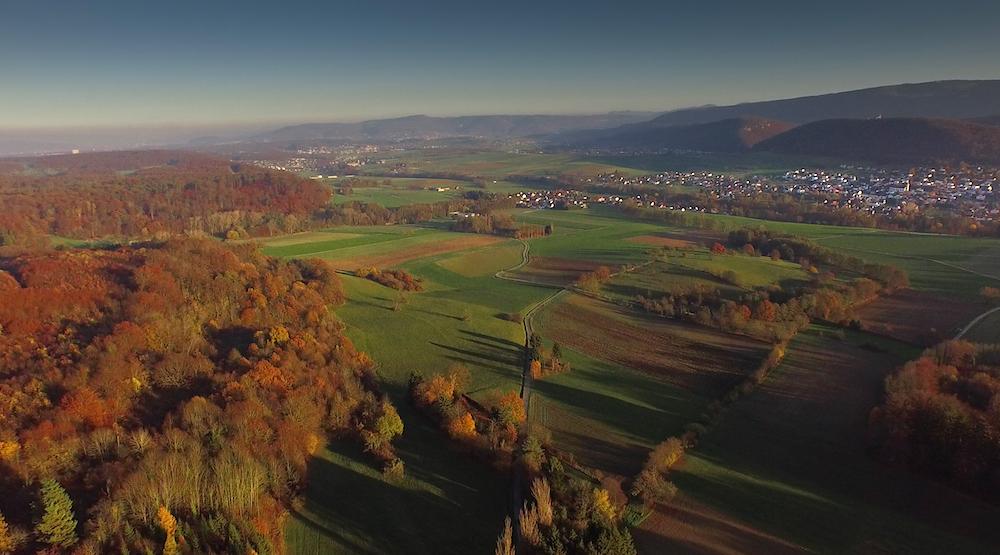 Les Alentours Coeur de Sundgau.jpg