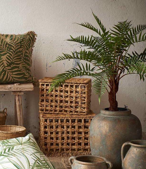 Mr Plant - Mr Plant leverer alt fra potteplanter til snittblomster - av typen som aldri dør ut ;) Kunstige planter, blomster og trær av høy kvalitet som er svært naturtro