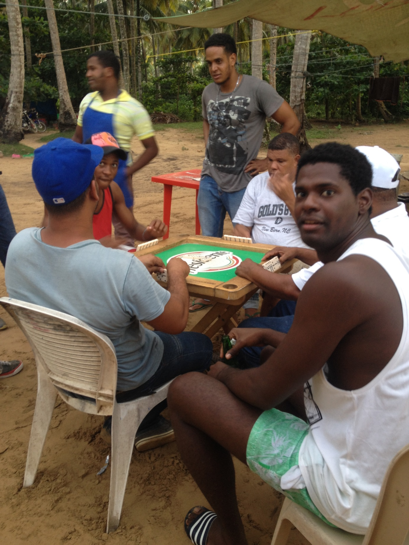 domino in dominicana