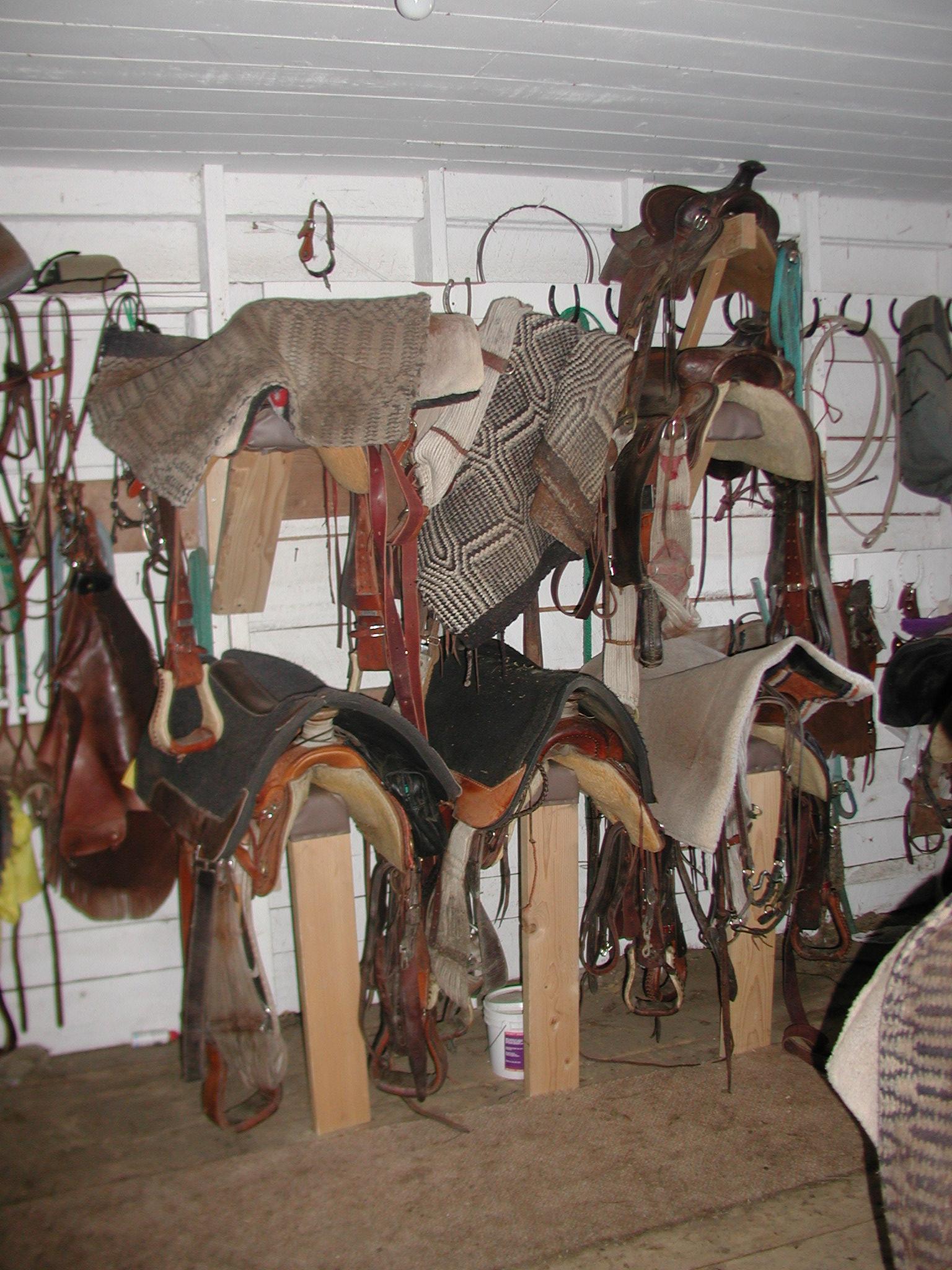 horse barn saddles.JPG