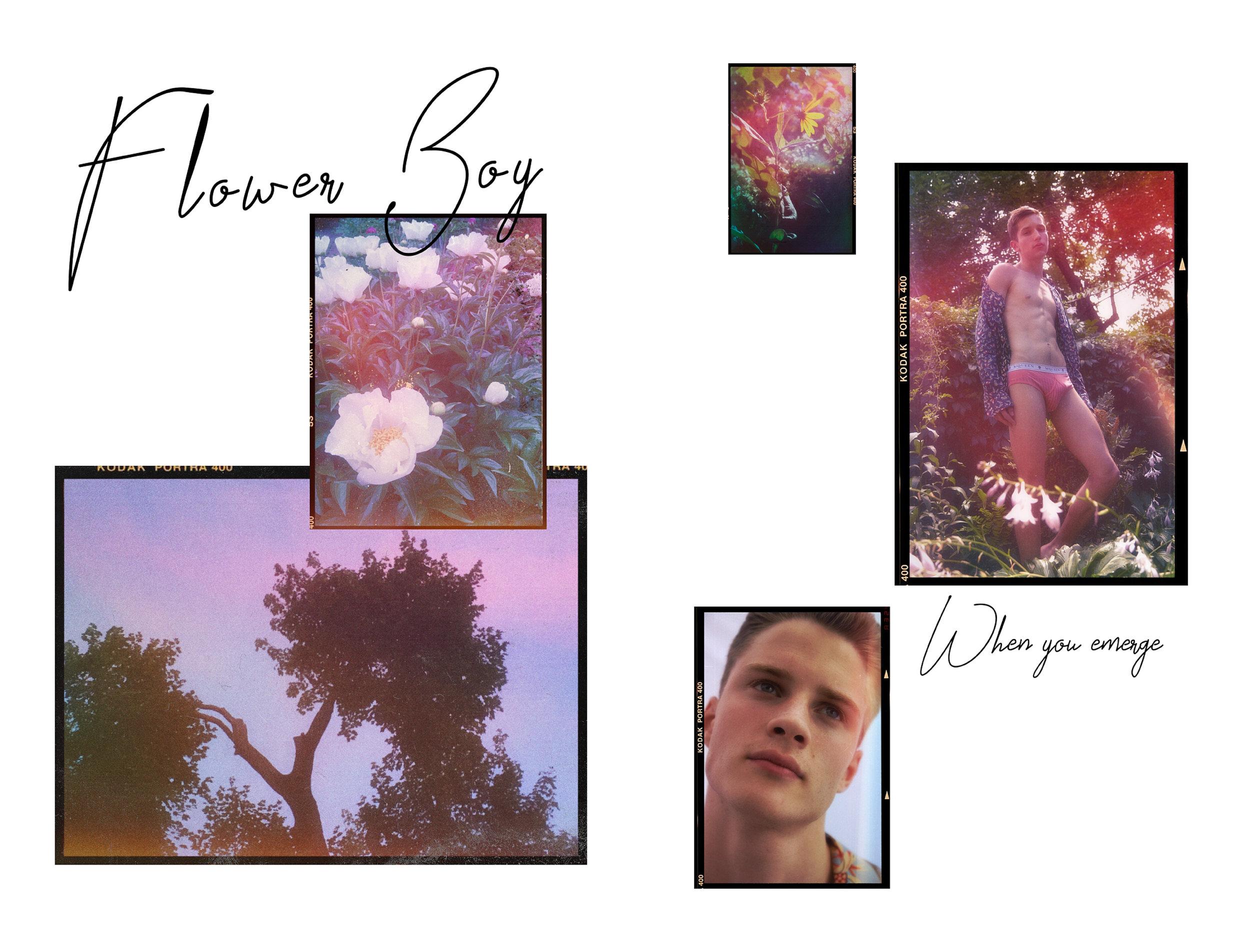 Flower Boy Website Layout.jpg