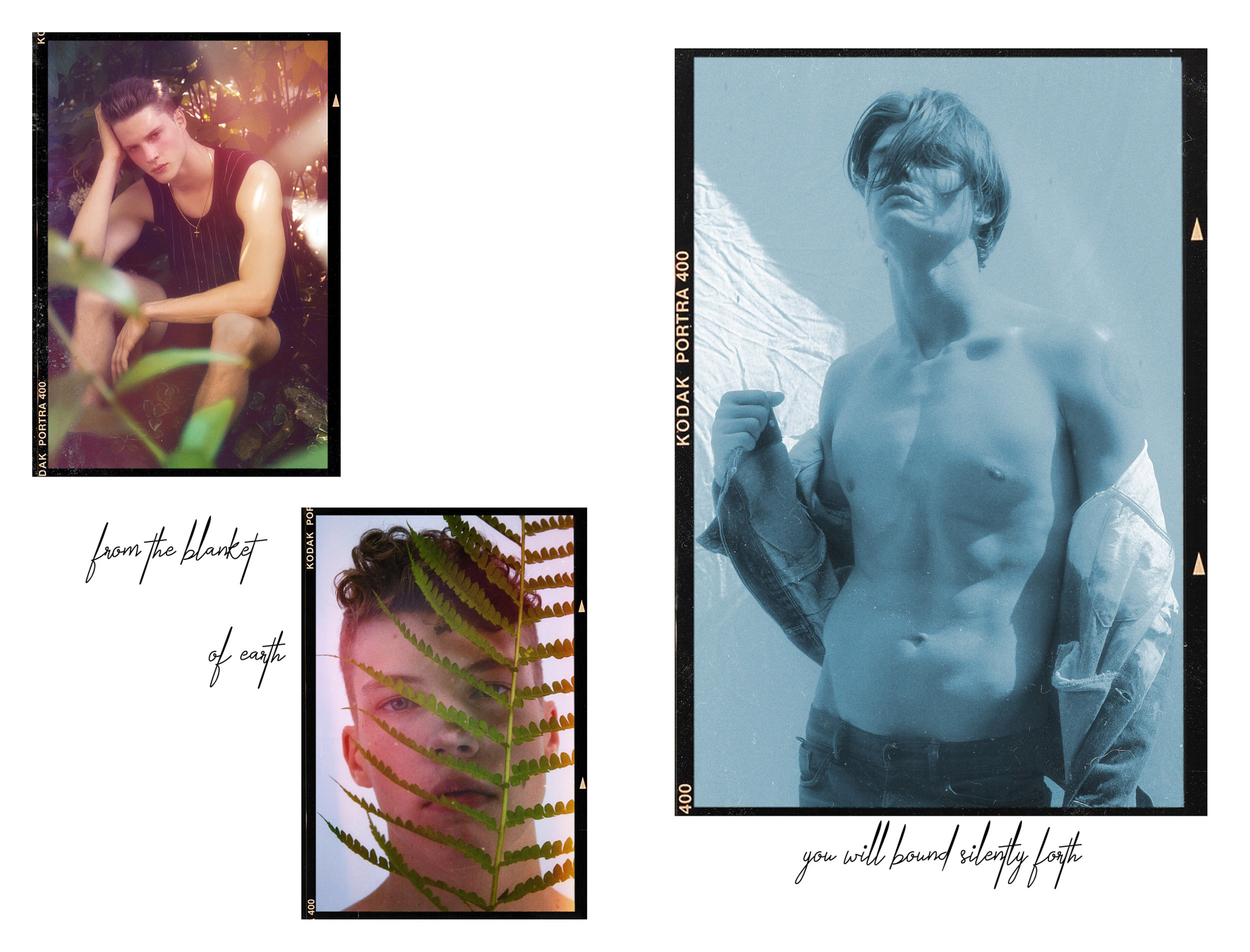 Flower Boy Website Layout2.jpg