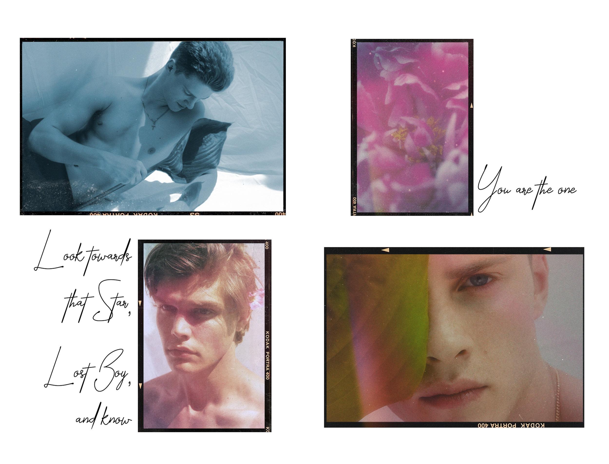 Flower Boy Website Layout6.jpg