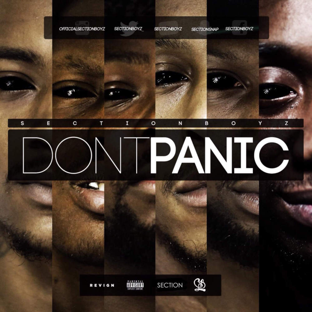 SECTION BOYZ - DON'T PANIC (SELF RELEASED, 2015)