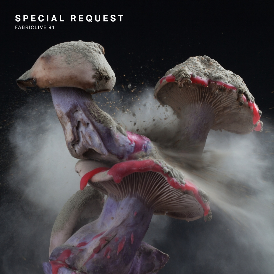 SPECIAL REQUEST - FABRICLIVE 91 (FABRIC, 2017)