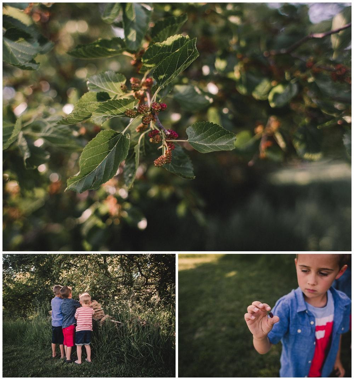 Kauffman Family_Kayla Failla Photography_1002.jpg