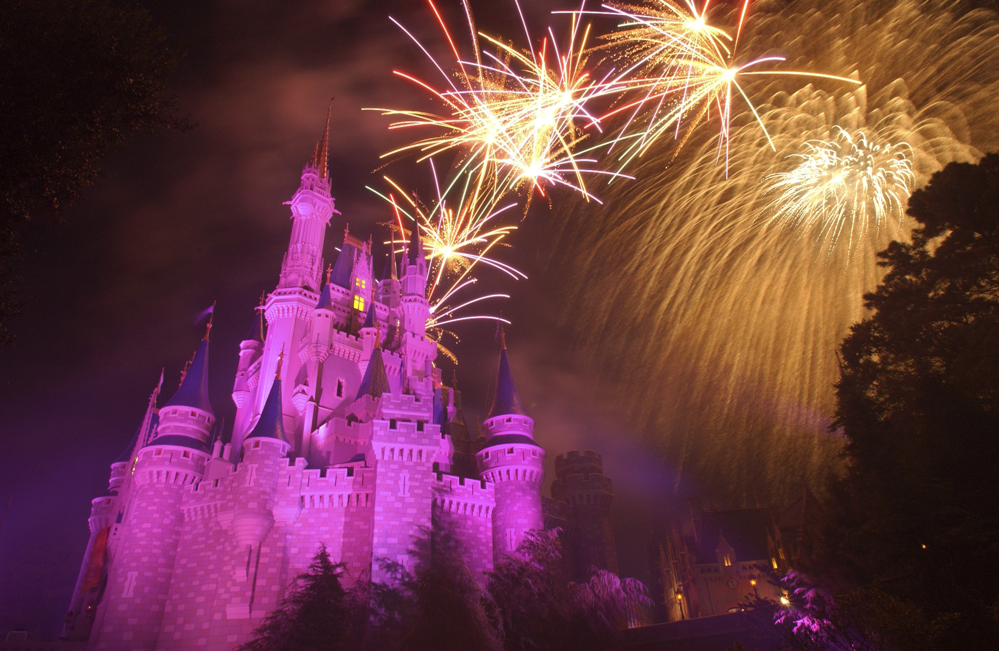 Disney's Magical Experience!    Have an adventure in the Magical Kingdom