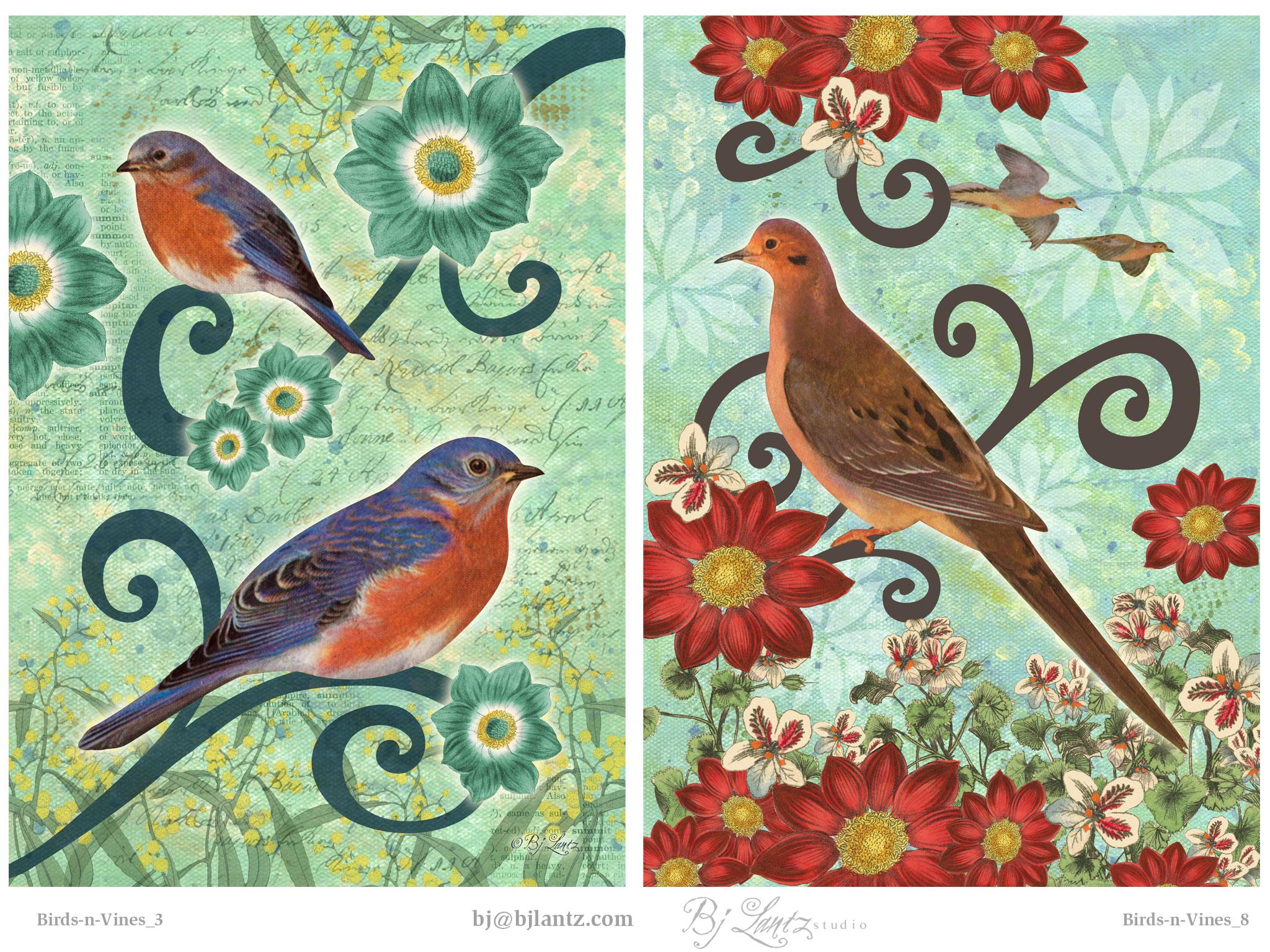 Birds-n-Vines_BJLantz_4.jpg