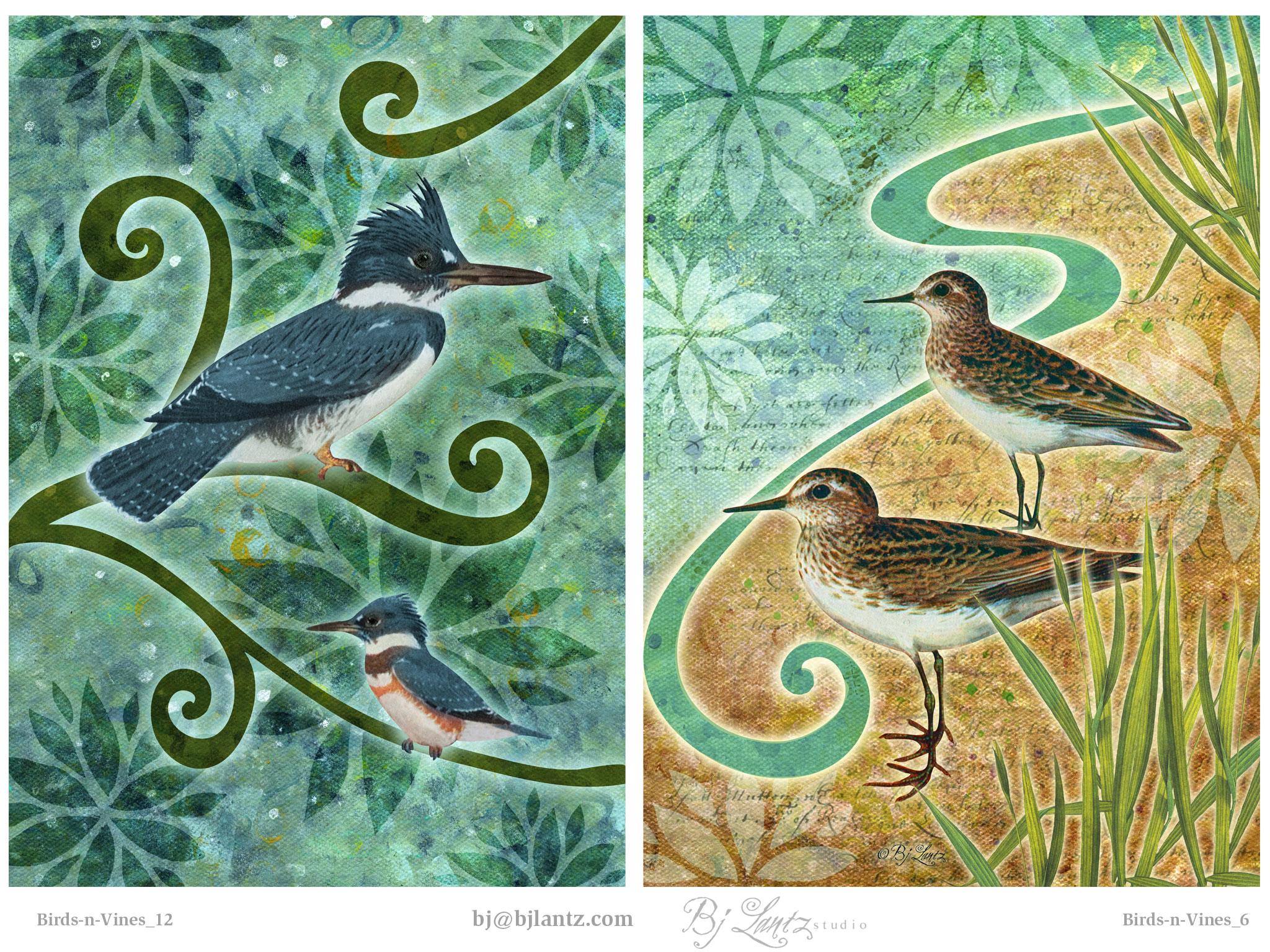 Birds-n-Vines_BJLantz_3.jpg