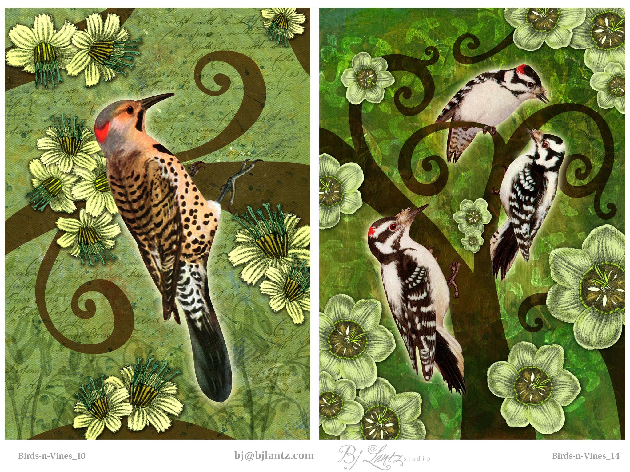 Birds-n-Vines_BJLantz_5.jpg