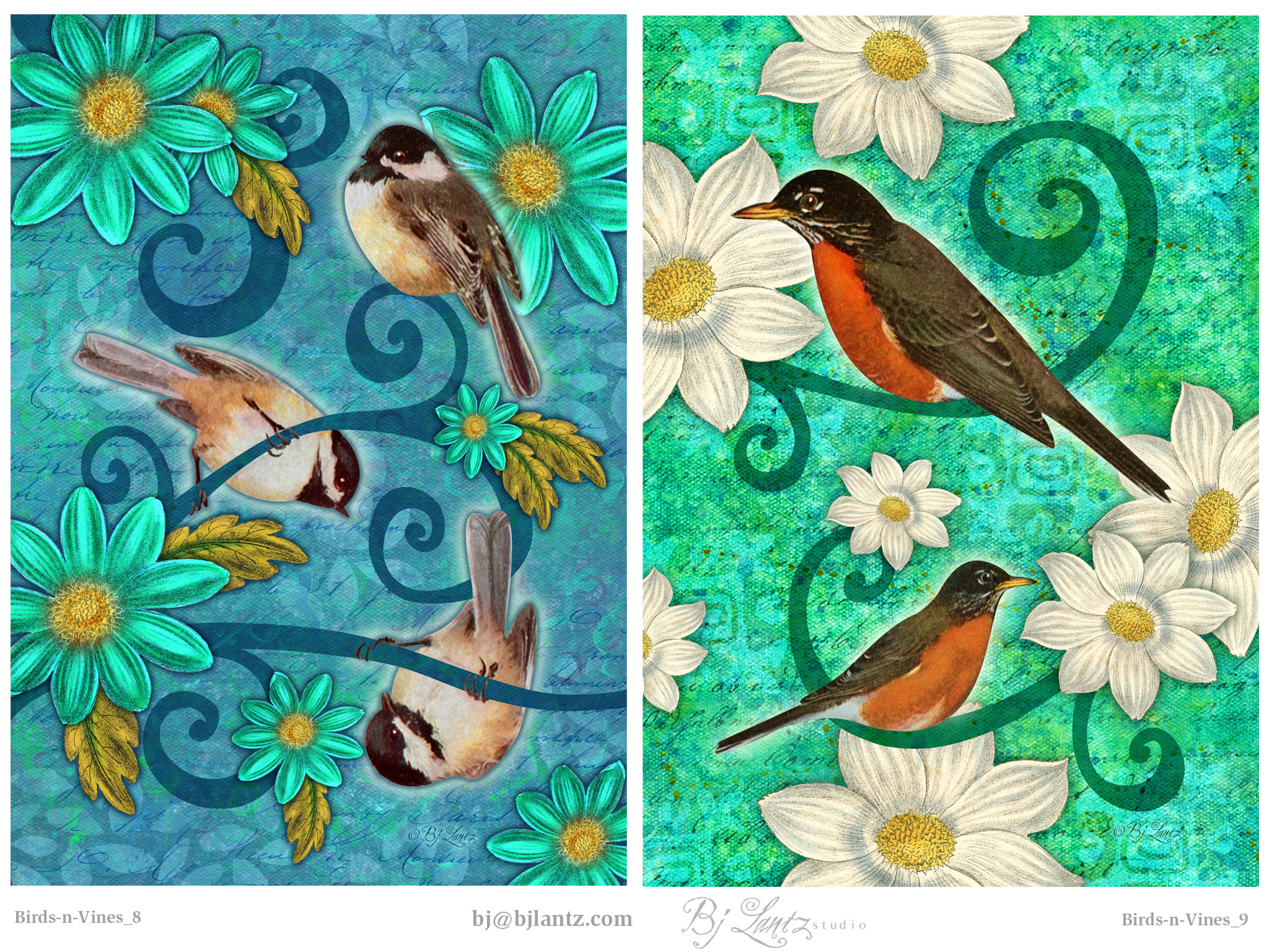 Birds-n-Vines_BJLantz_6.jpg
