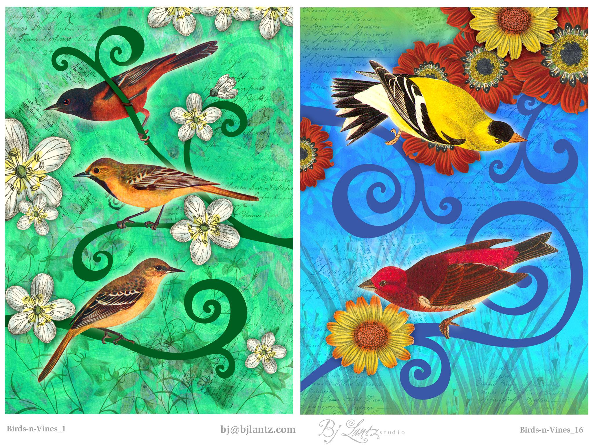 Birds-n-Vines_BJLantz_7.jpg