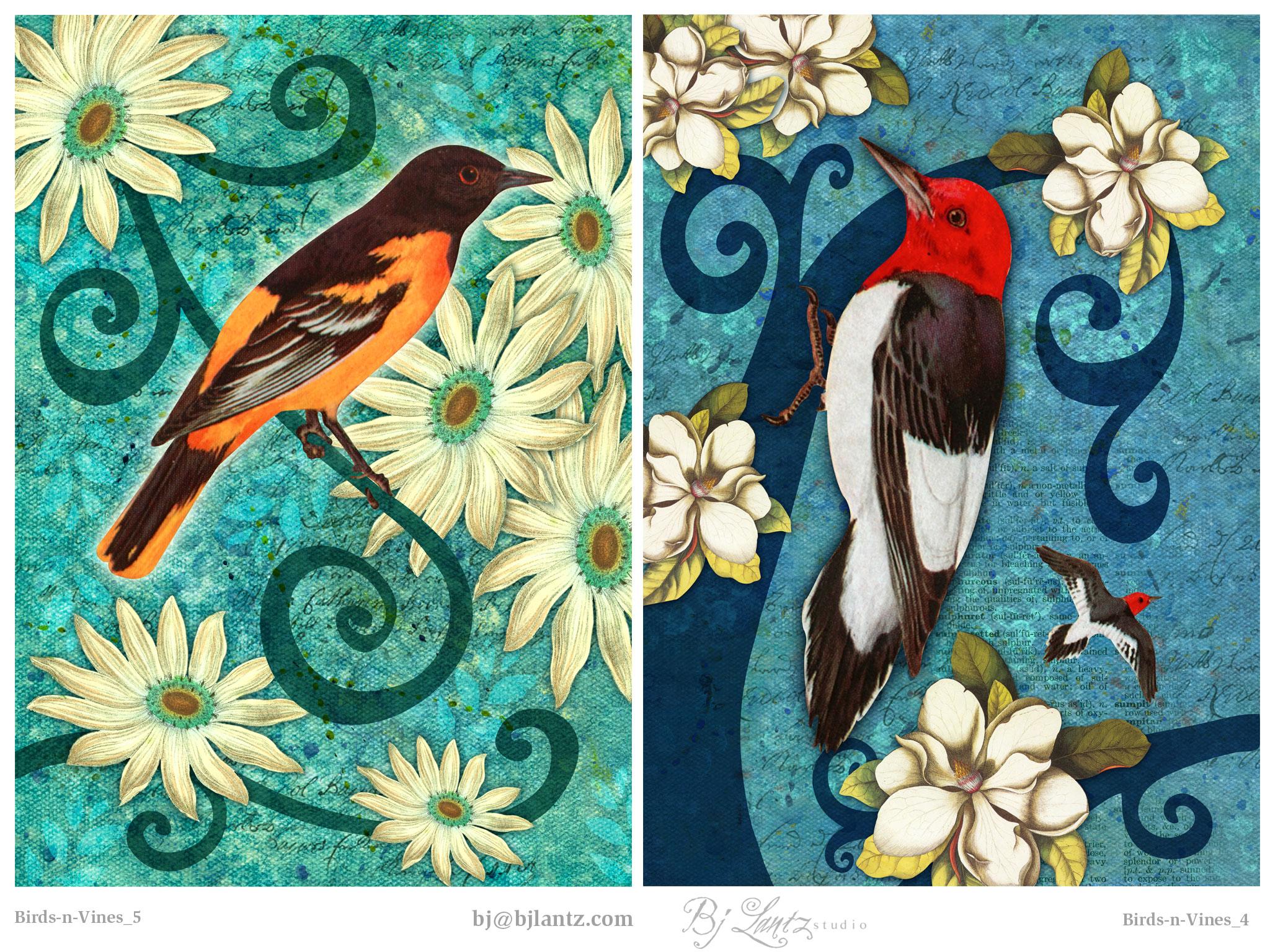 Birds-n-Vines_BJLantz_9.jpg