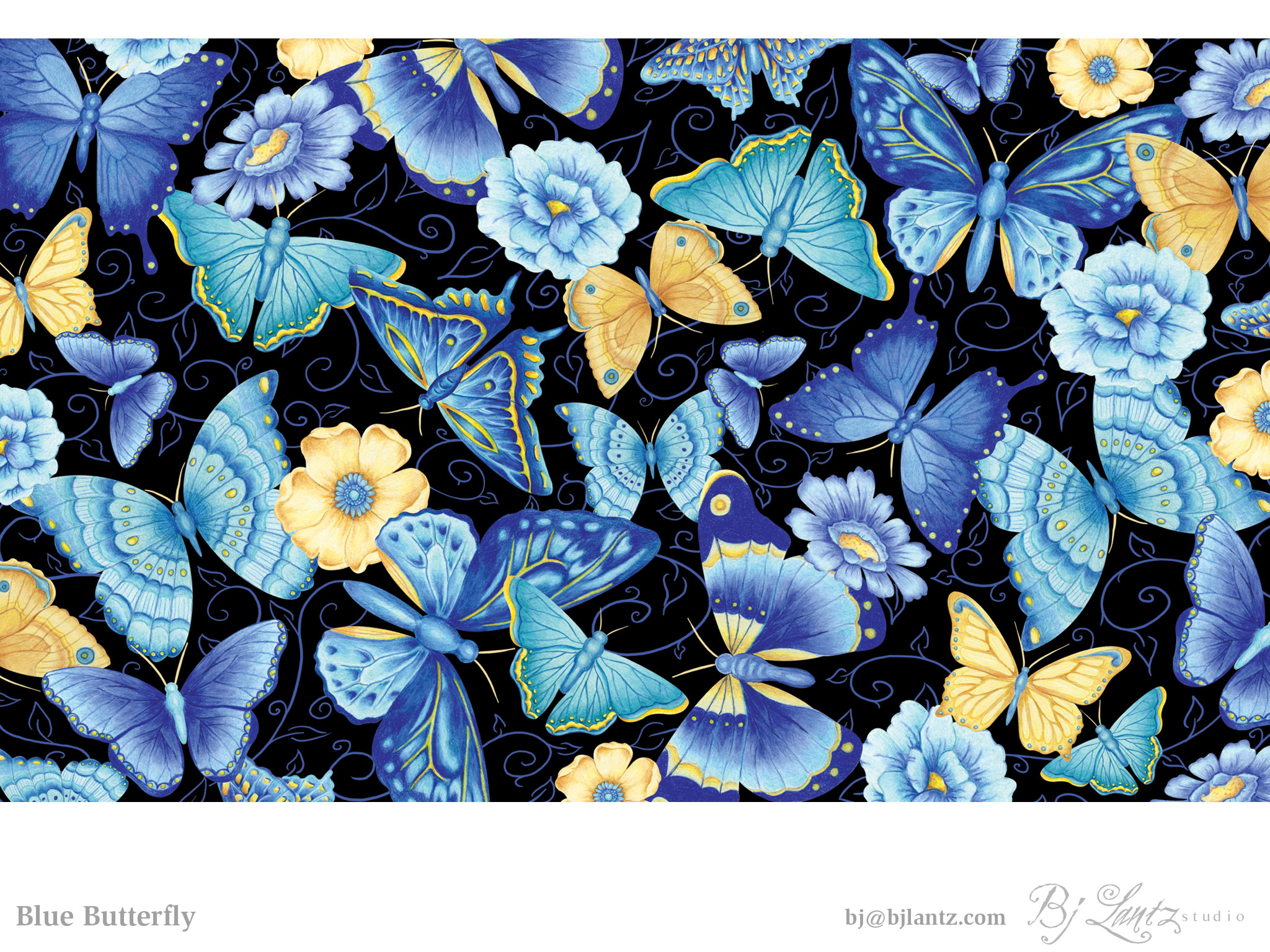 BlueButterfly_BJLantz_1.jpg