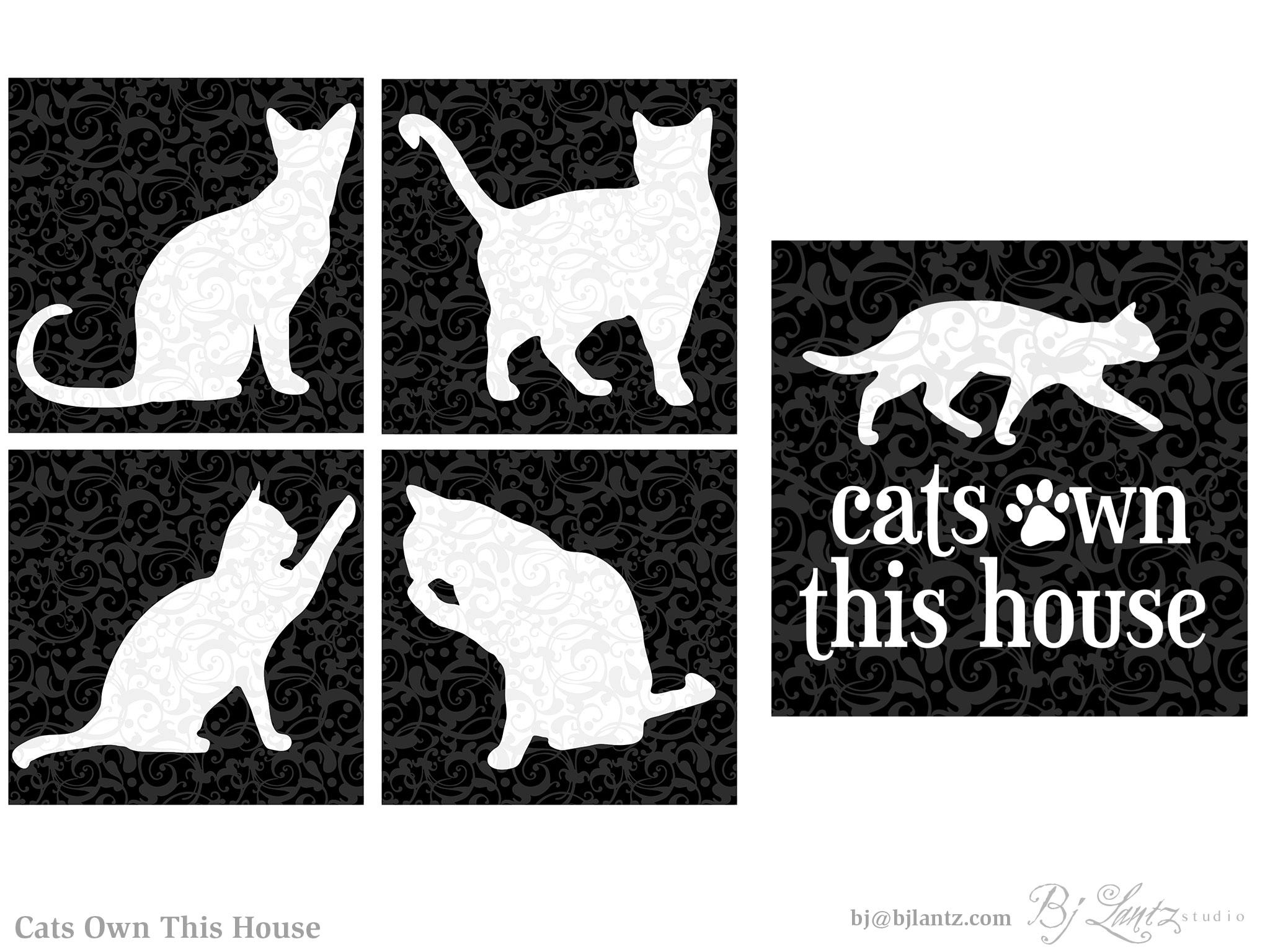 CatsOwnThisHouse_BJLantz_portfolio.jpg