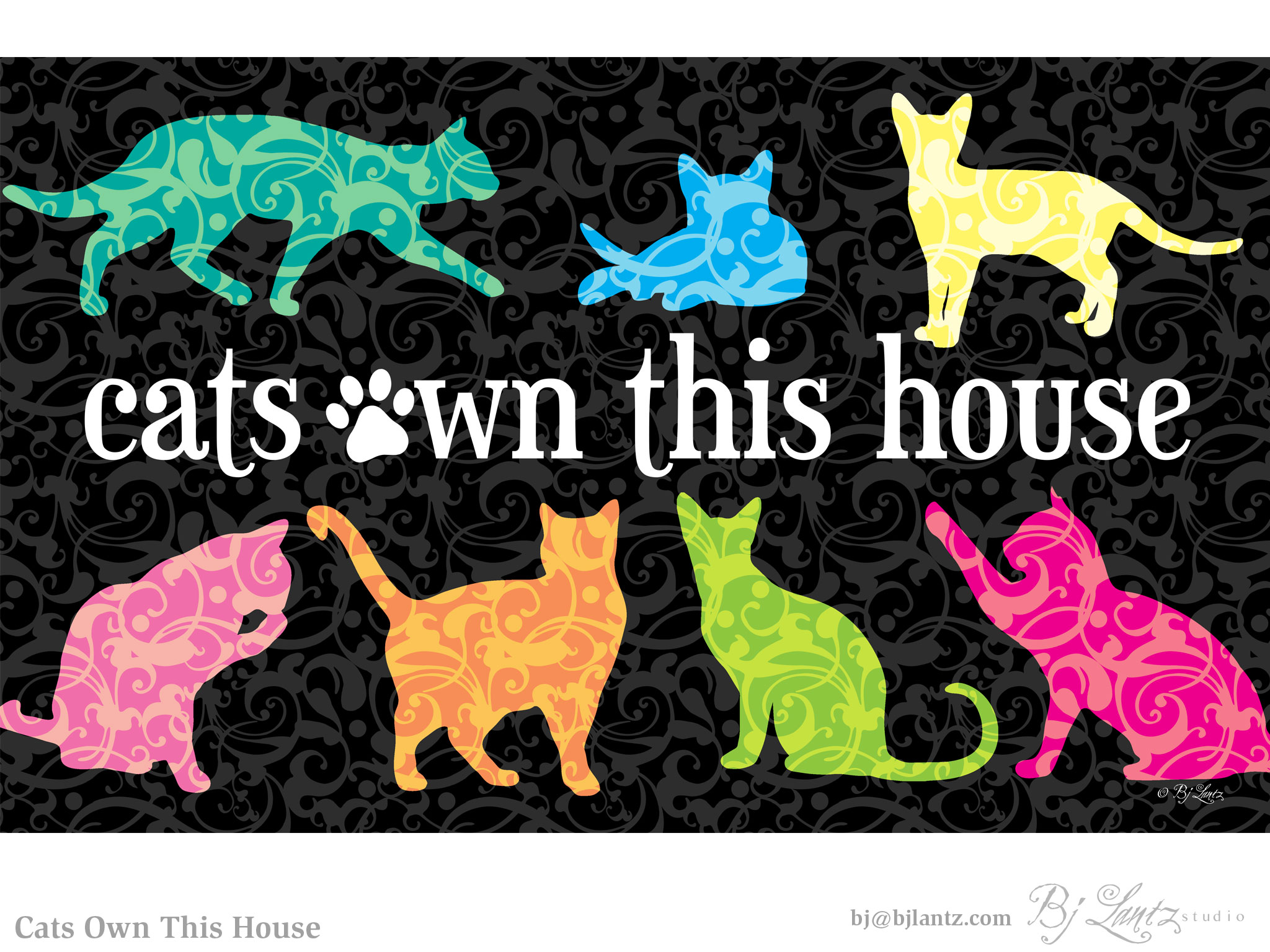 CatsOwnThisHouse_BJLantz_2.jpg