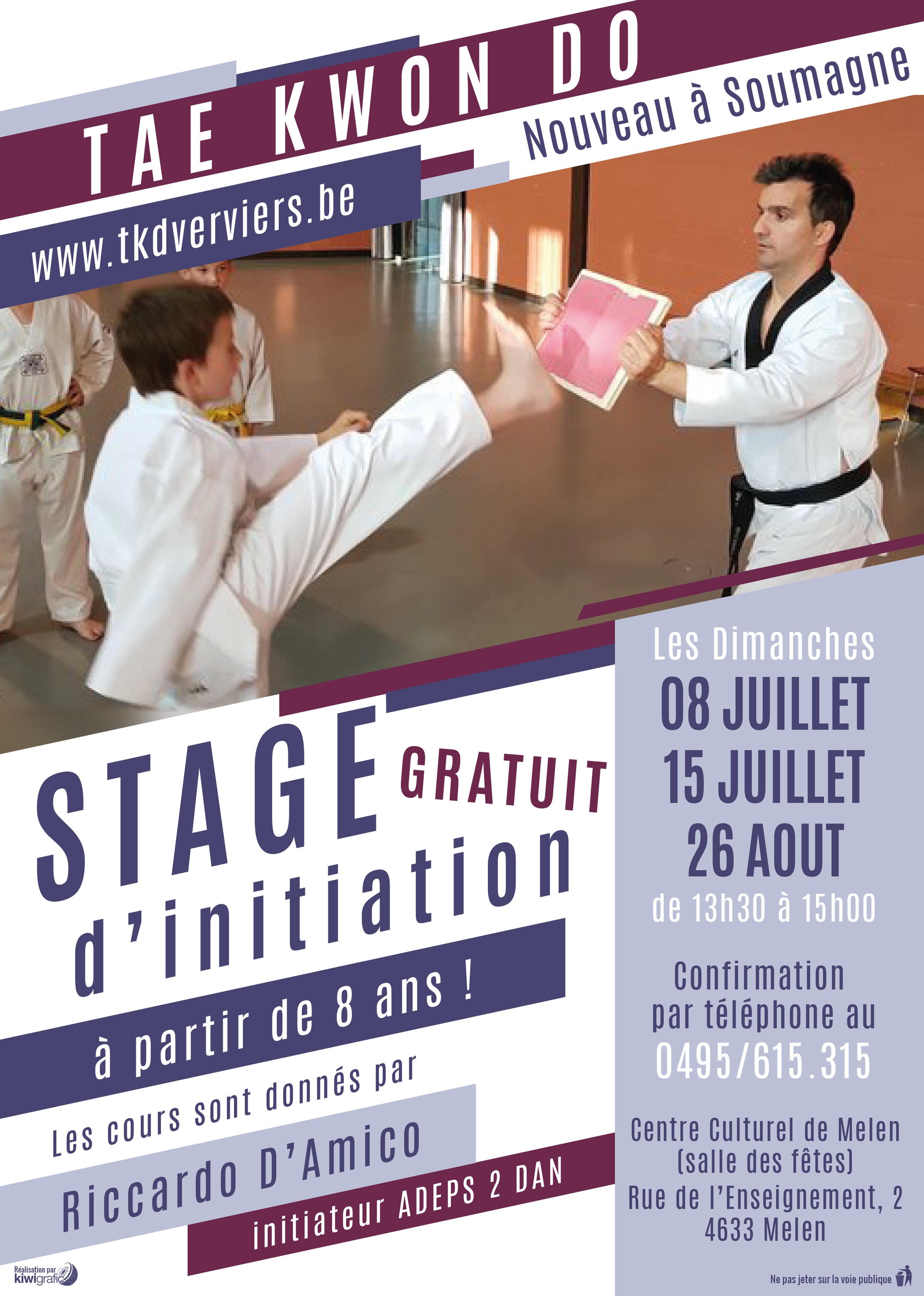 Affiche stage web.jpg
