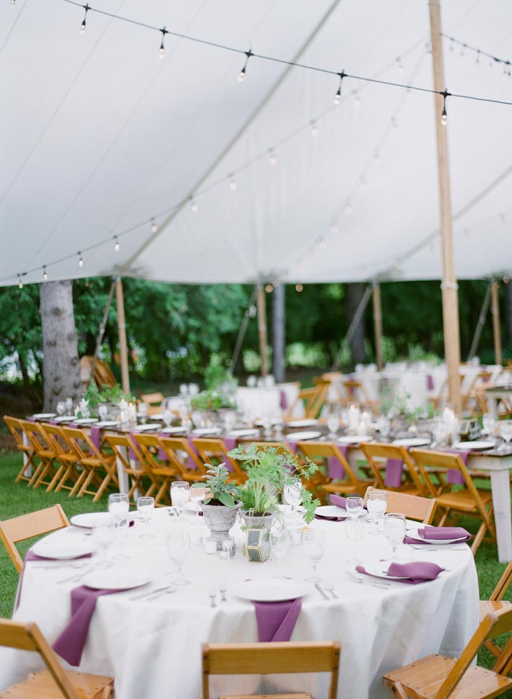 a-matter-of-taste-wedding-decorators-in-lansing-mi-tented-wedding.jpg