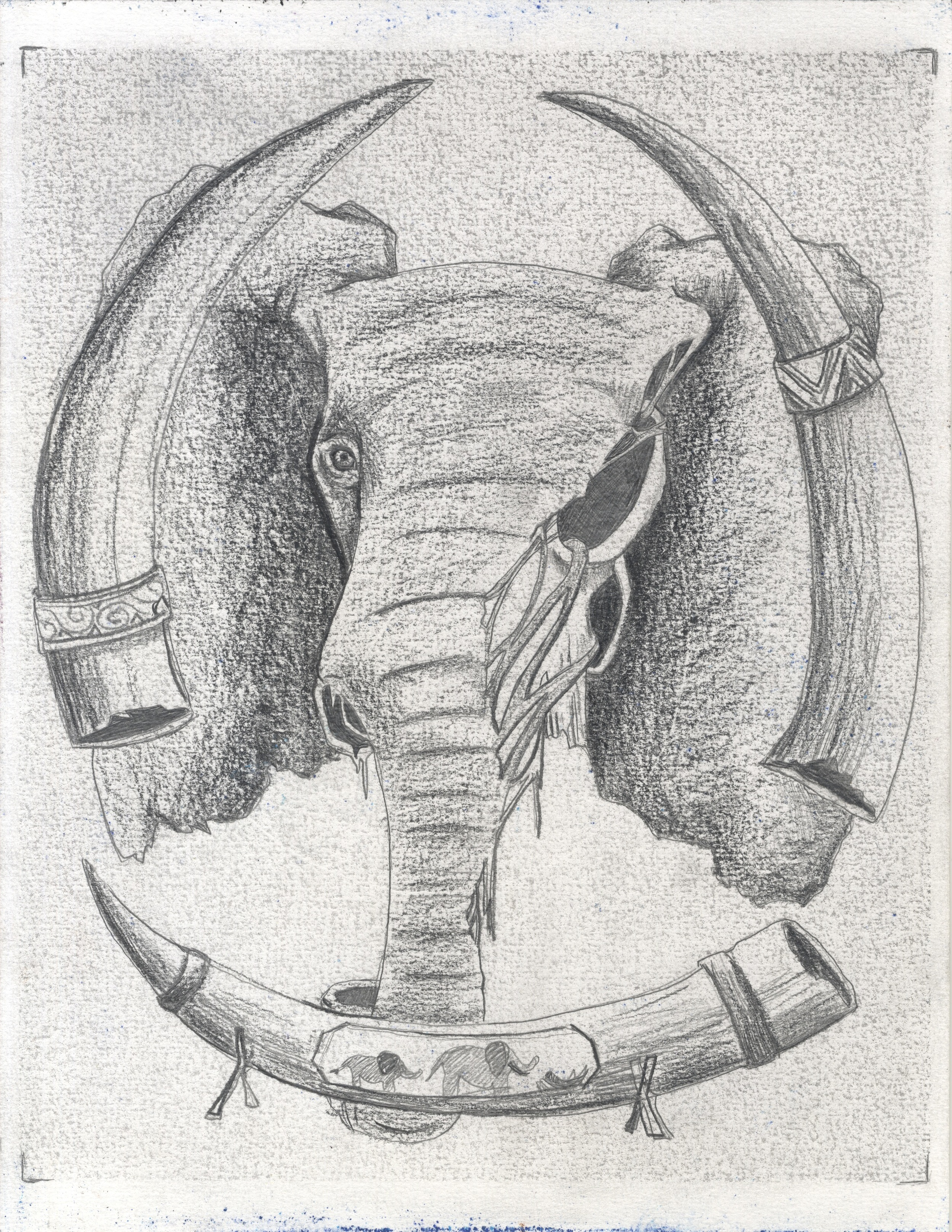 Horrors of the Ivory Trade