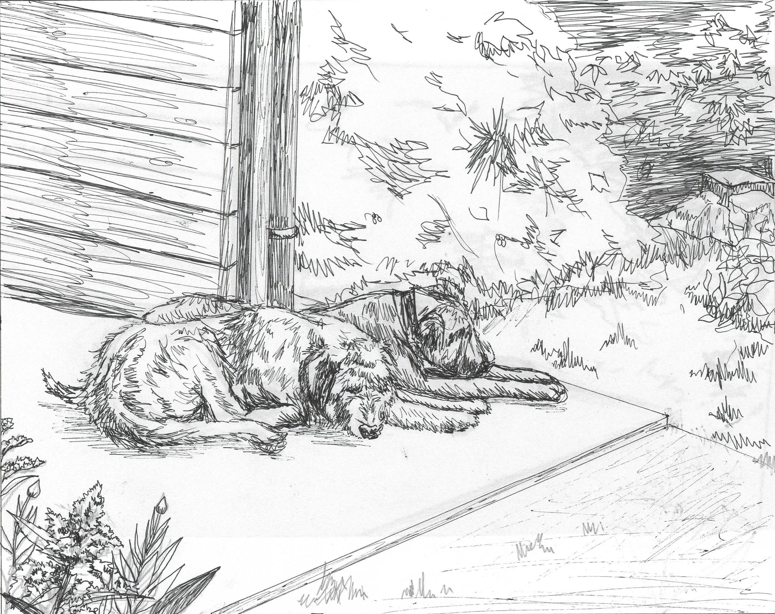Irish Wolfhounds Sketch