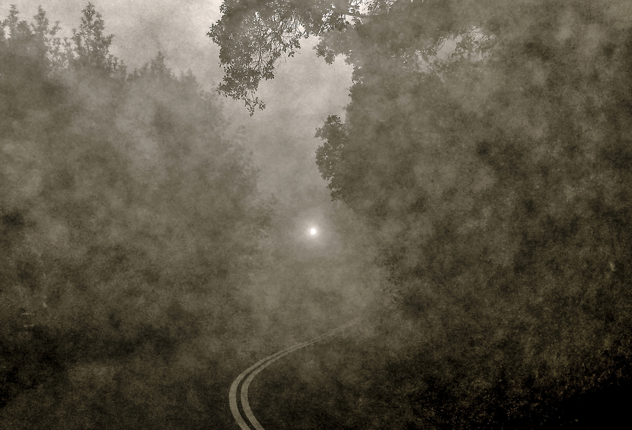 Fog and Light . Digital Photograph. A Leder.