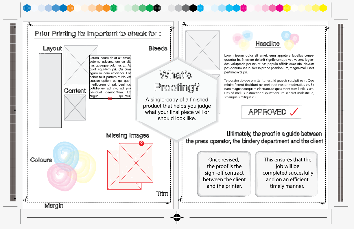 Student Design Project:  C  reation of the whole infographic design and the text styles.  Illustration done   by: Catalina Morillo   Use of Illustrator.