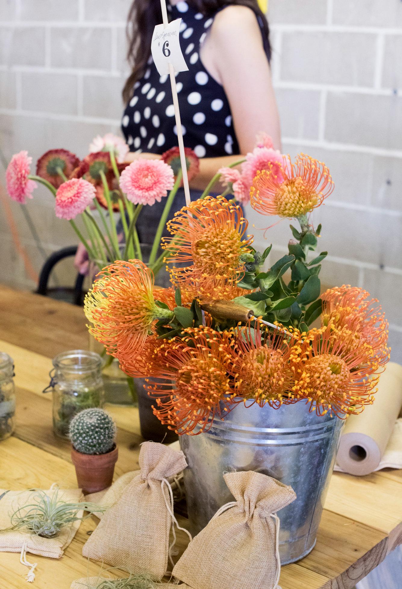 Cultivate Tucson Spring 2017-edited-0135.jpg