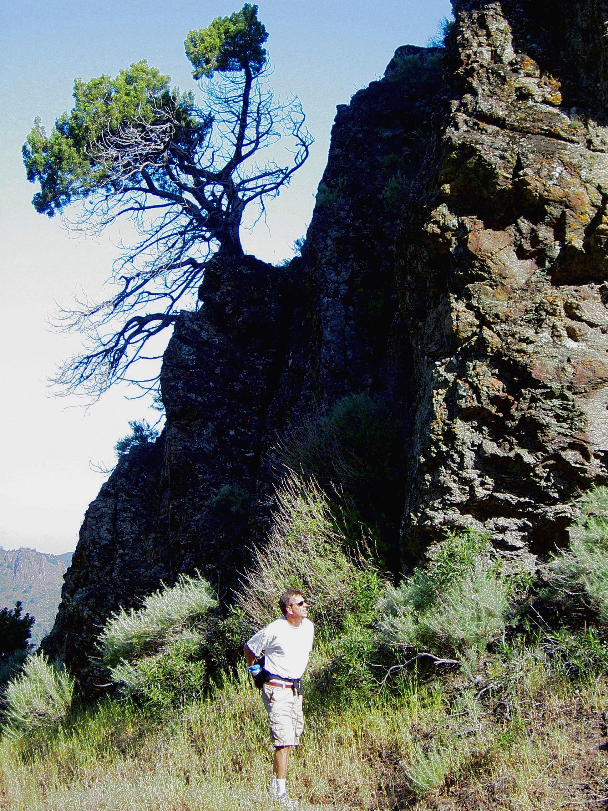 Kenny Koch enters Mt. Diablo's Falls Trail.