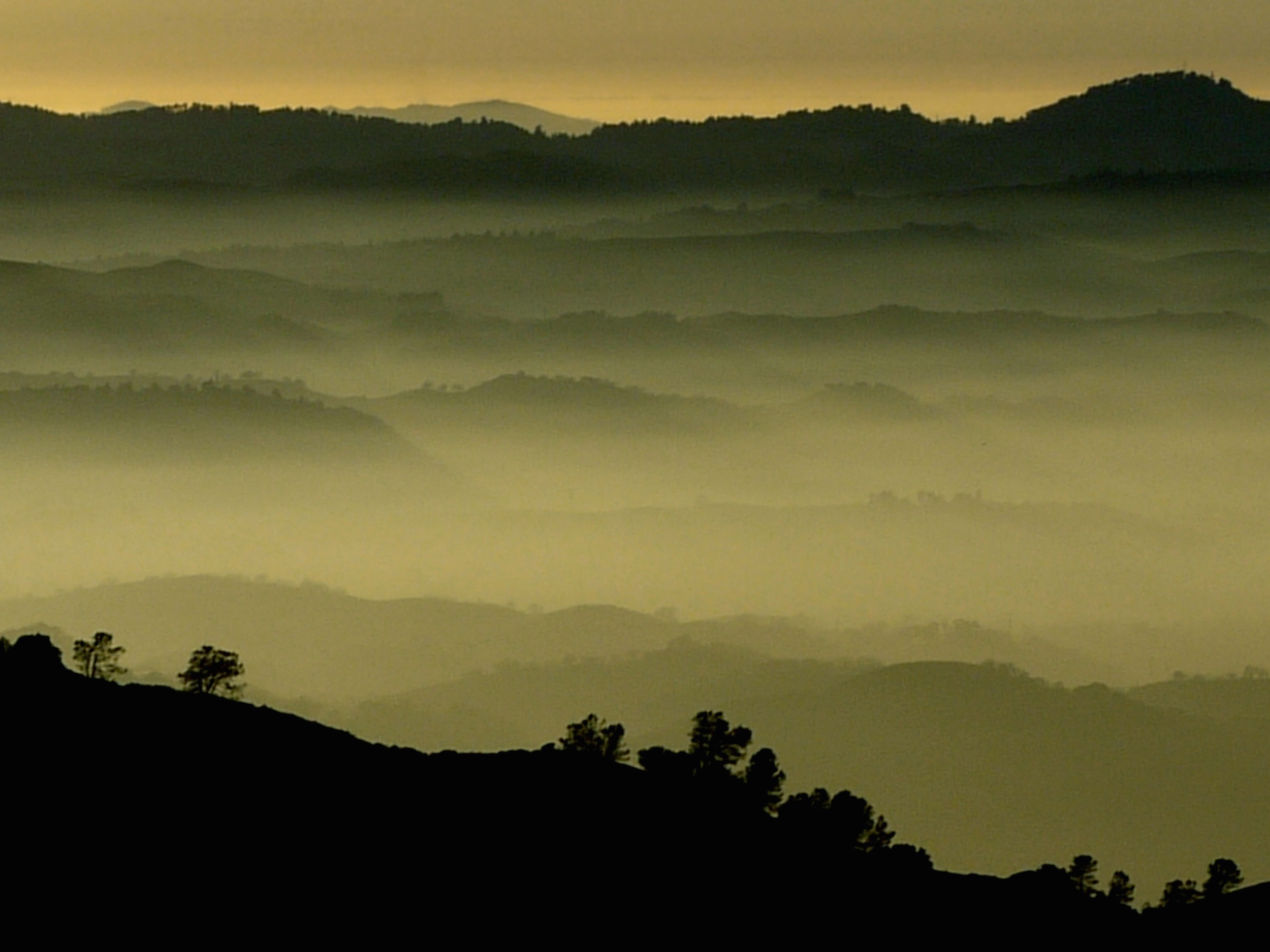 Diablo's western foothills slither through the fog.
