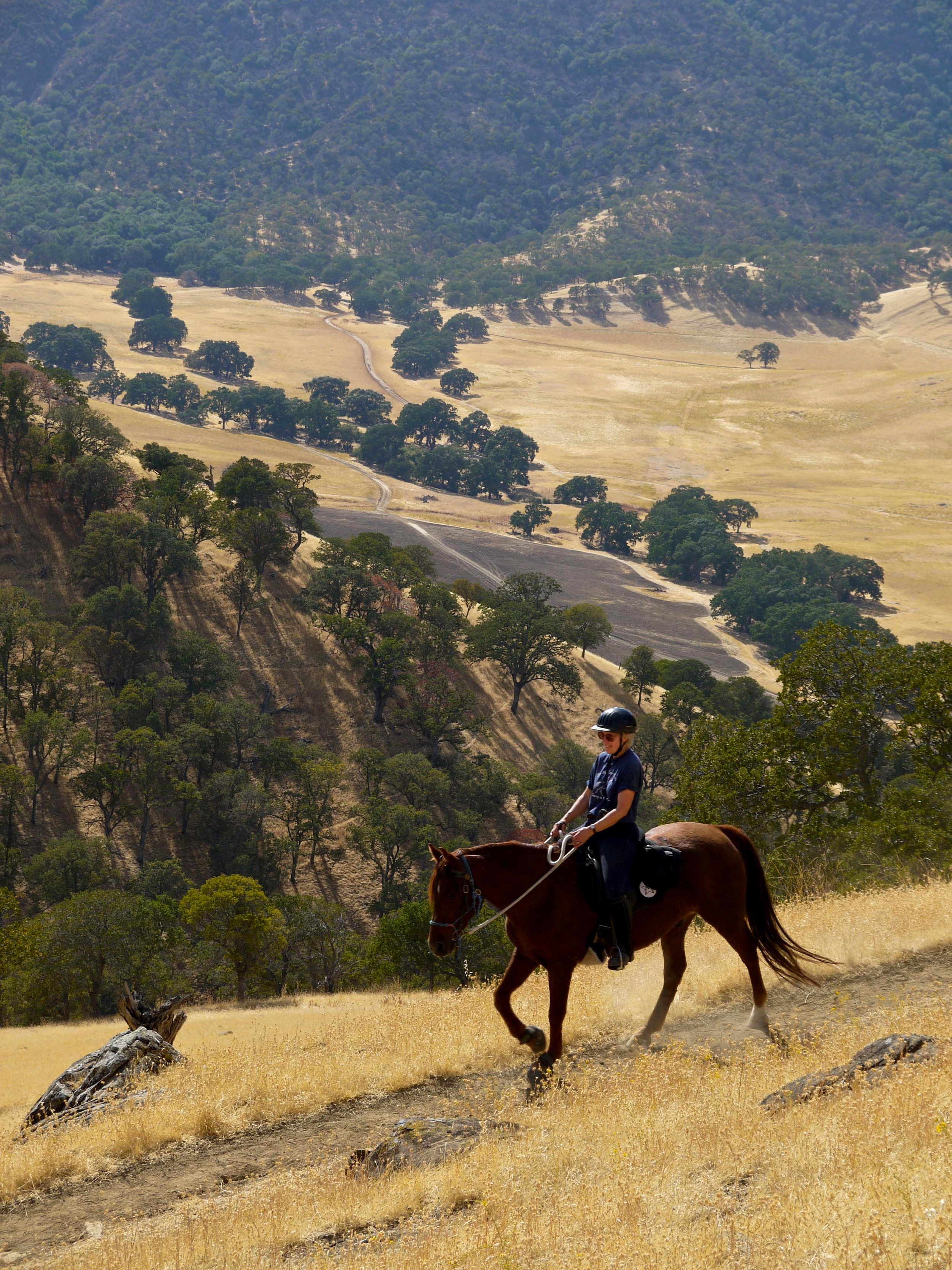 The Hardy Canyon Trail is a prime track for equestrians looking to move up in the world.