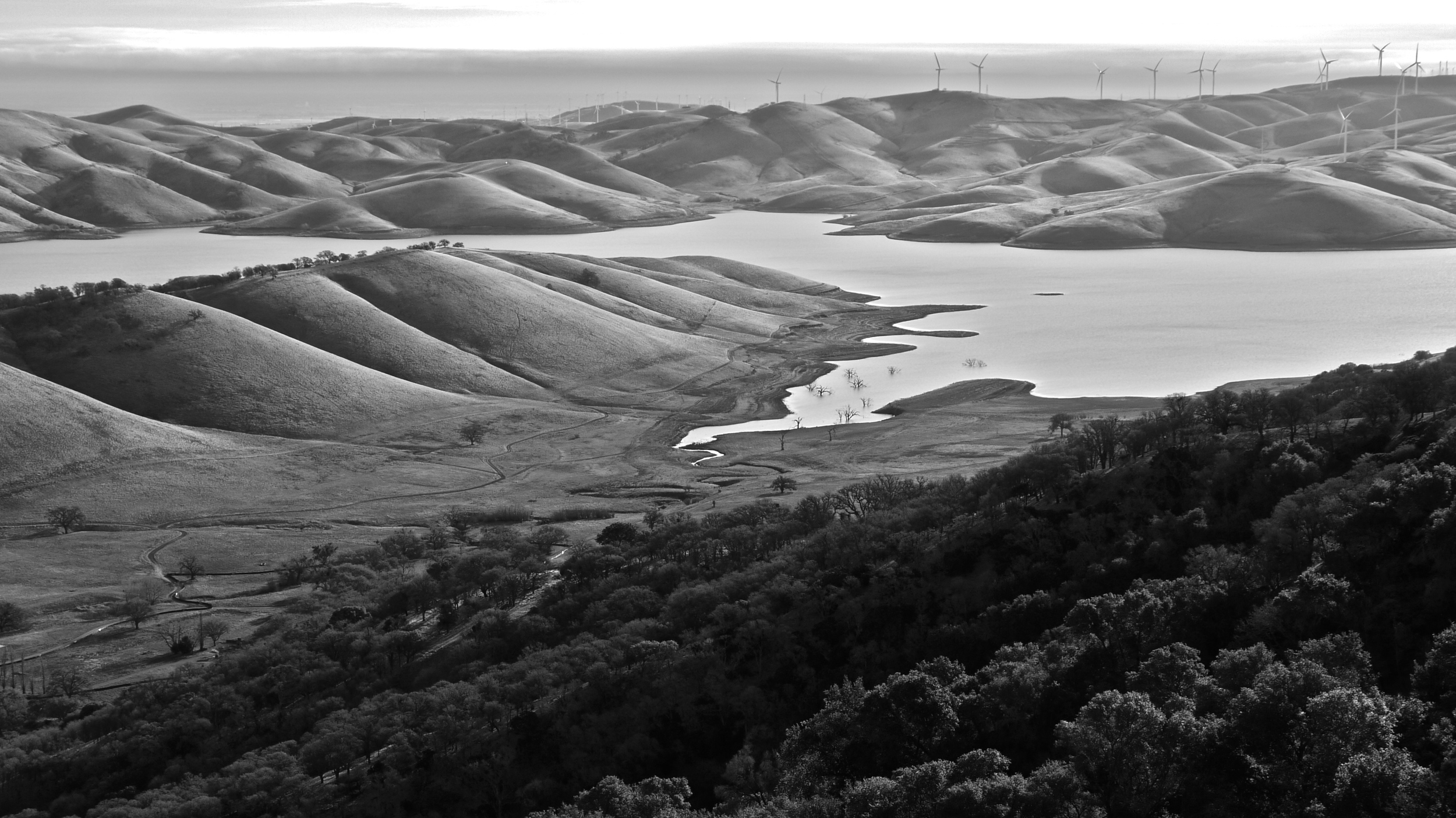 The reservoir viewed from the Miwok Trail.