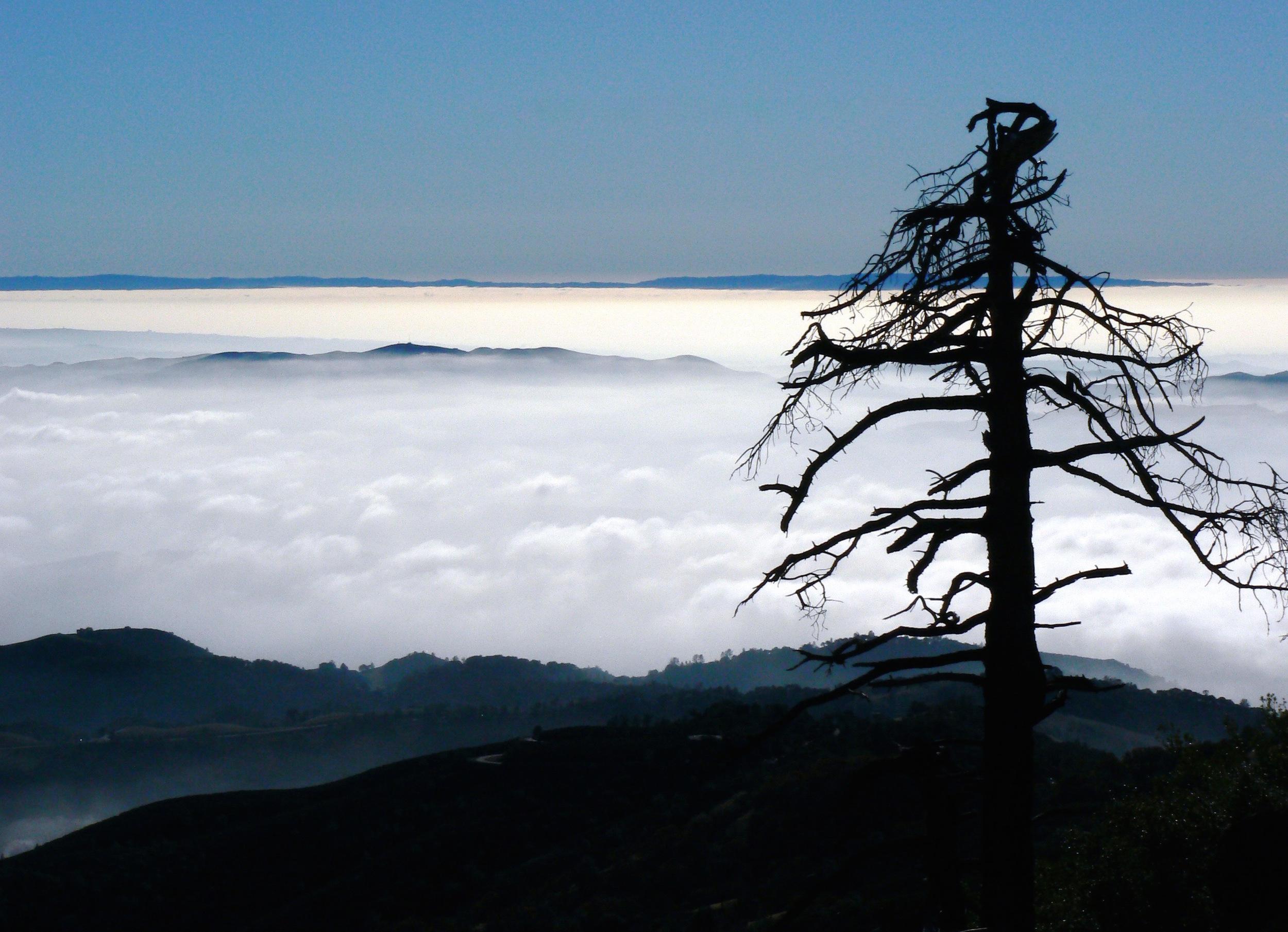The marine layer drifts beneath the summit.