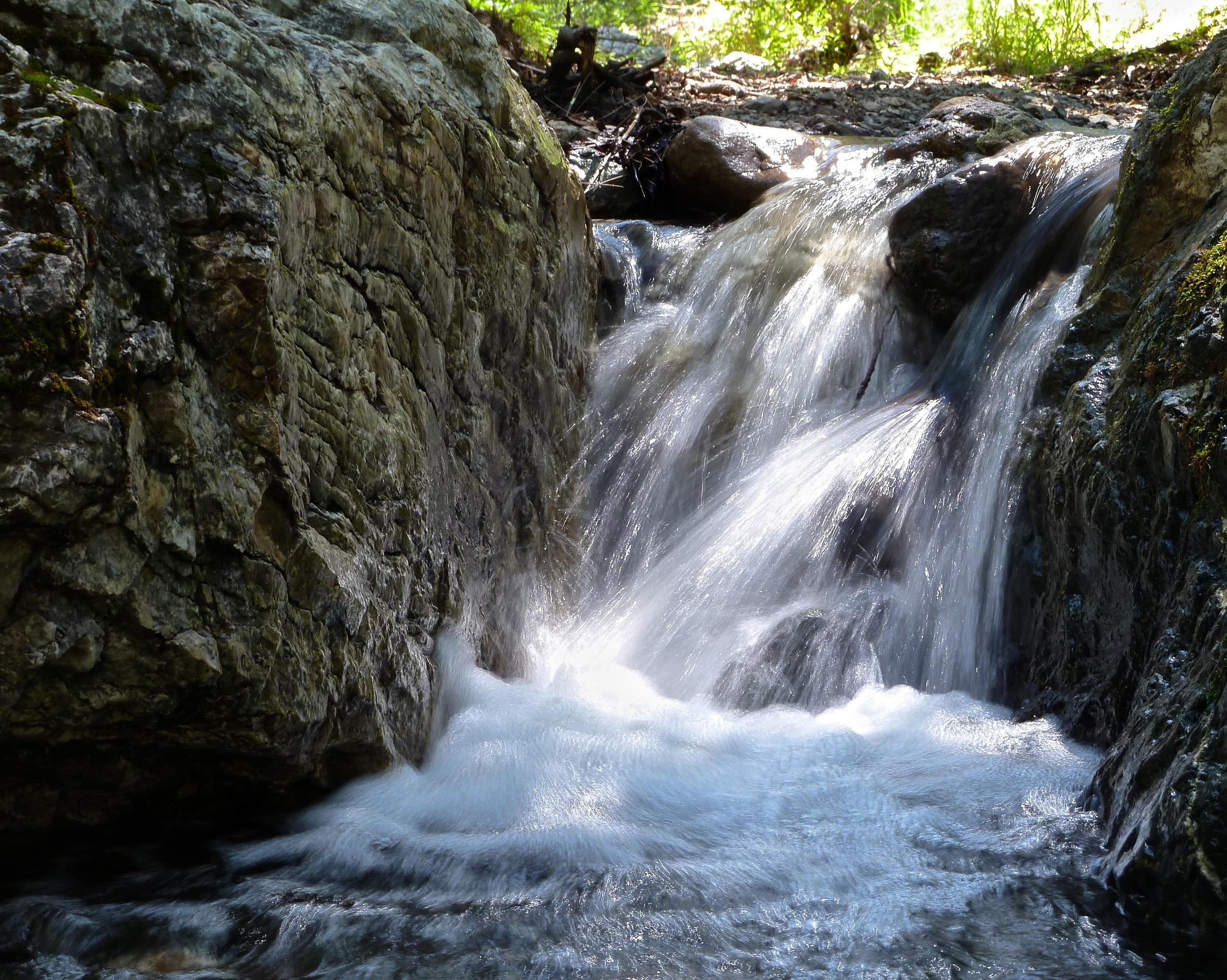 Donner Creek, Mt. Diablo.
