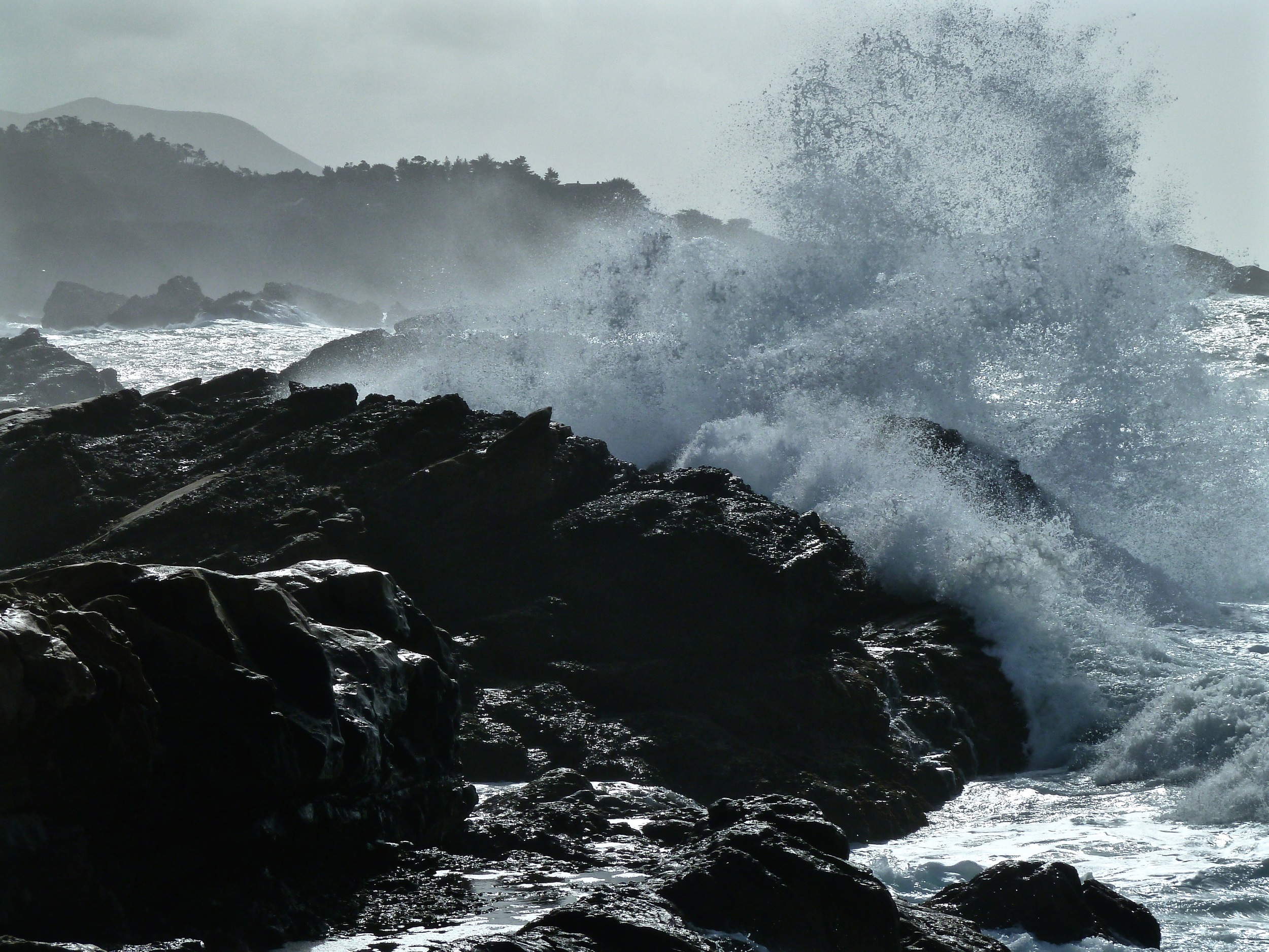 A breaker smashes against the rocks at Sand Hill Cove, Point Lobos.