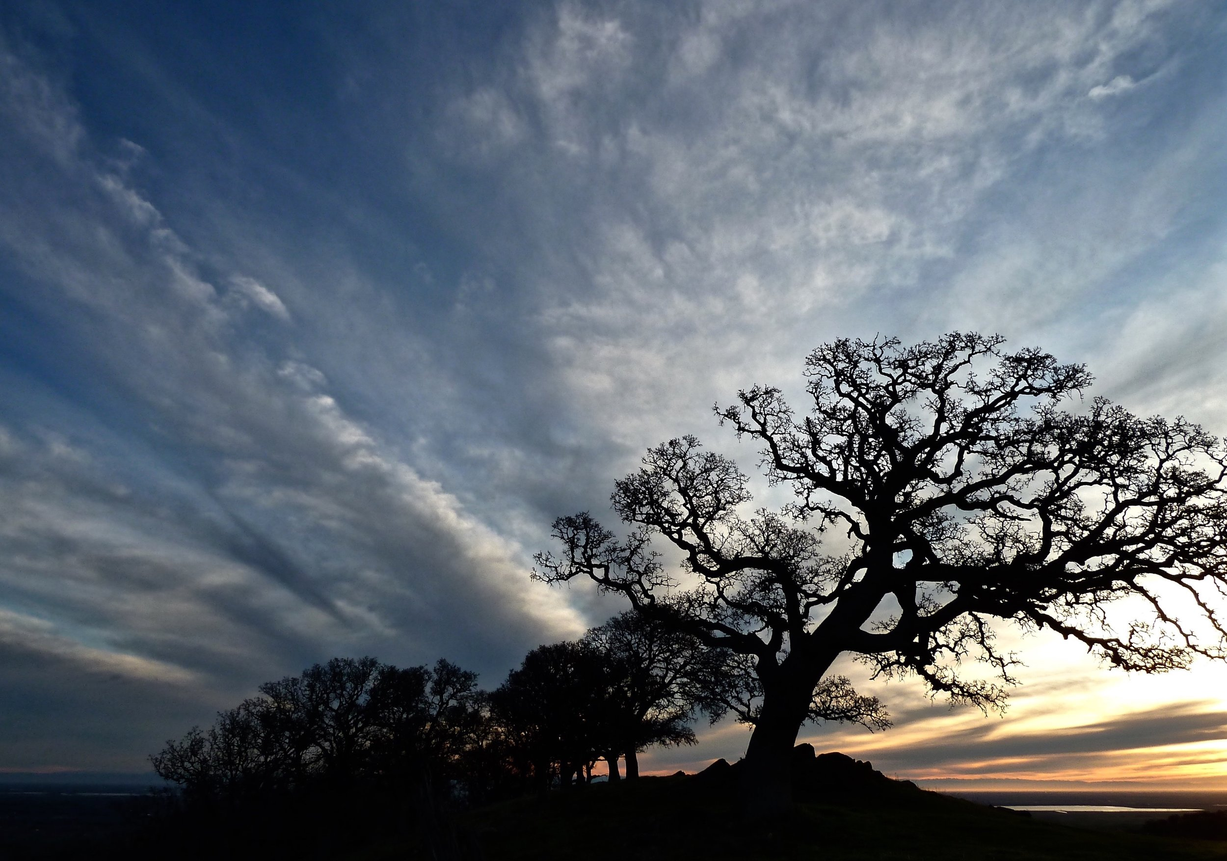 Old One greets the winter sunrise atop Round Valley Regional Preserve.