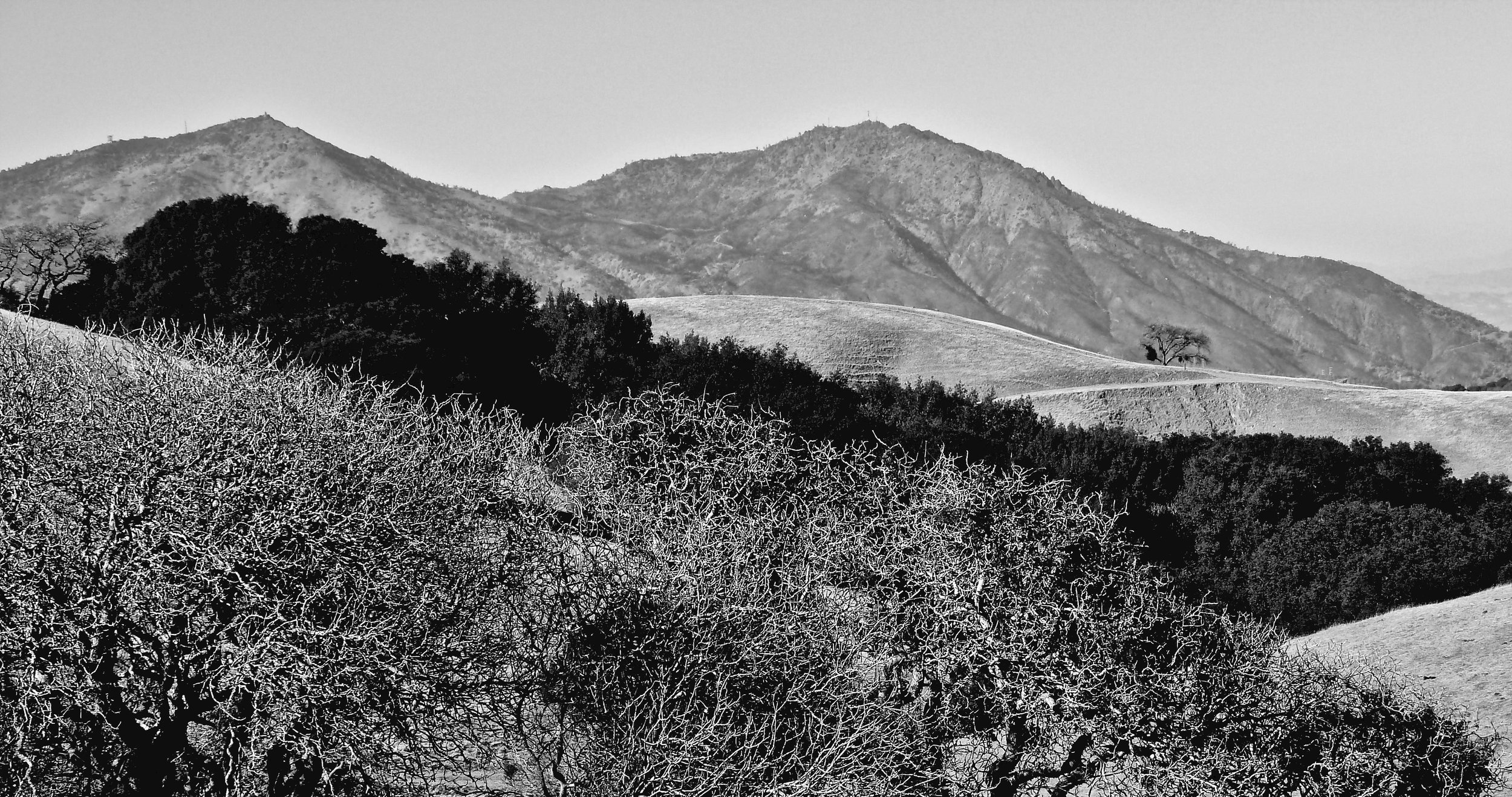 The view from Morgan Territory Regional Preserve.