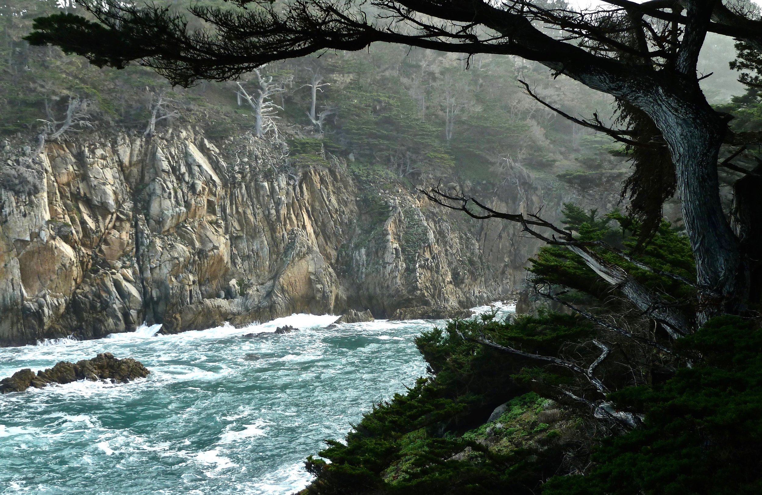 Cypress Cove, Point Lobos.