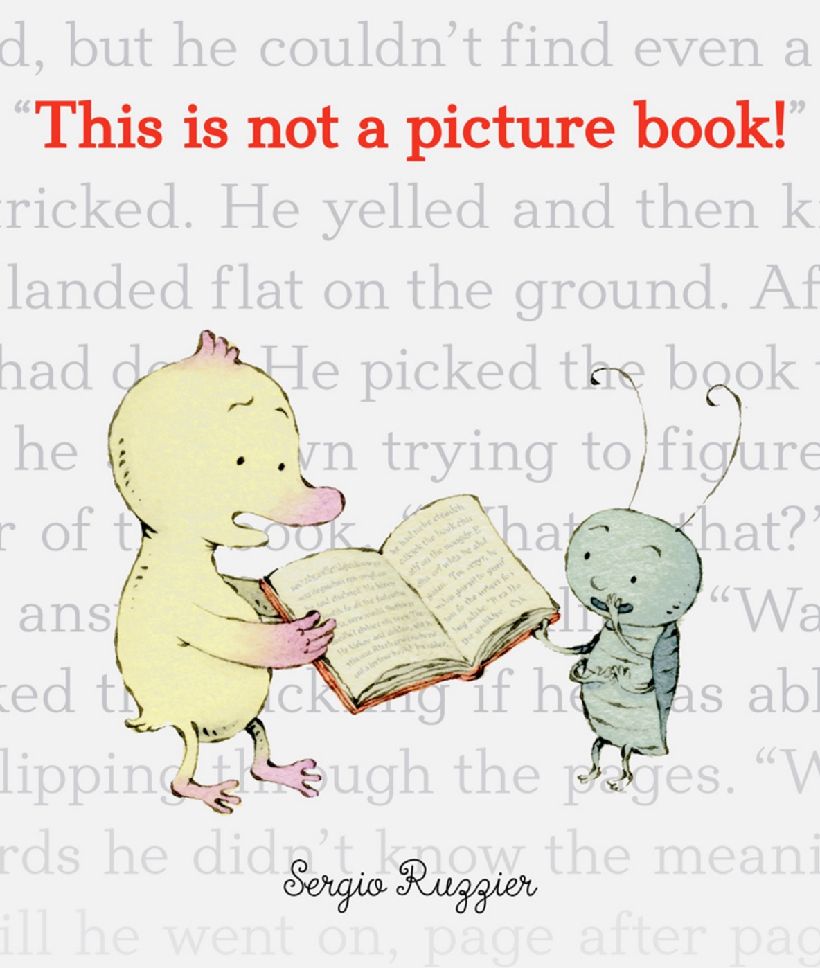 This Is Not a Picture Book , by Sergio Ruzzier