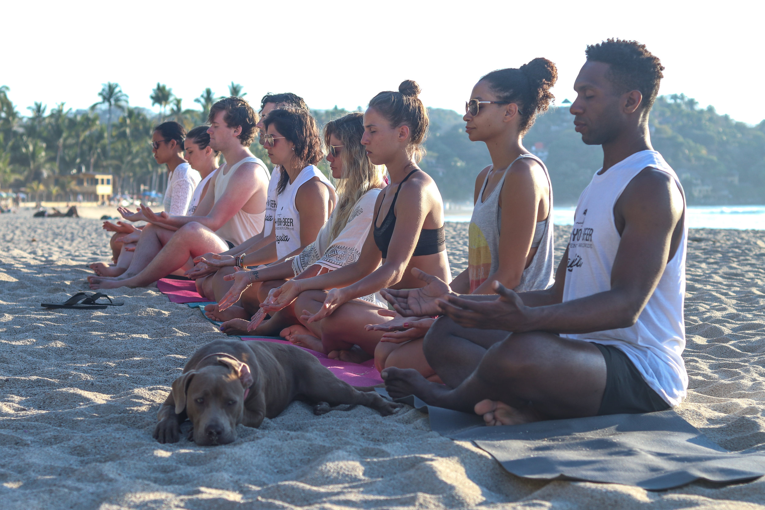 Meditation on the beach with our friend Buddha the pup!