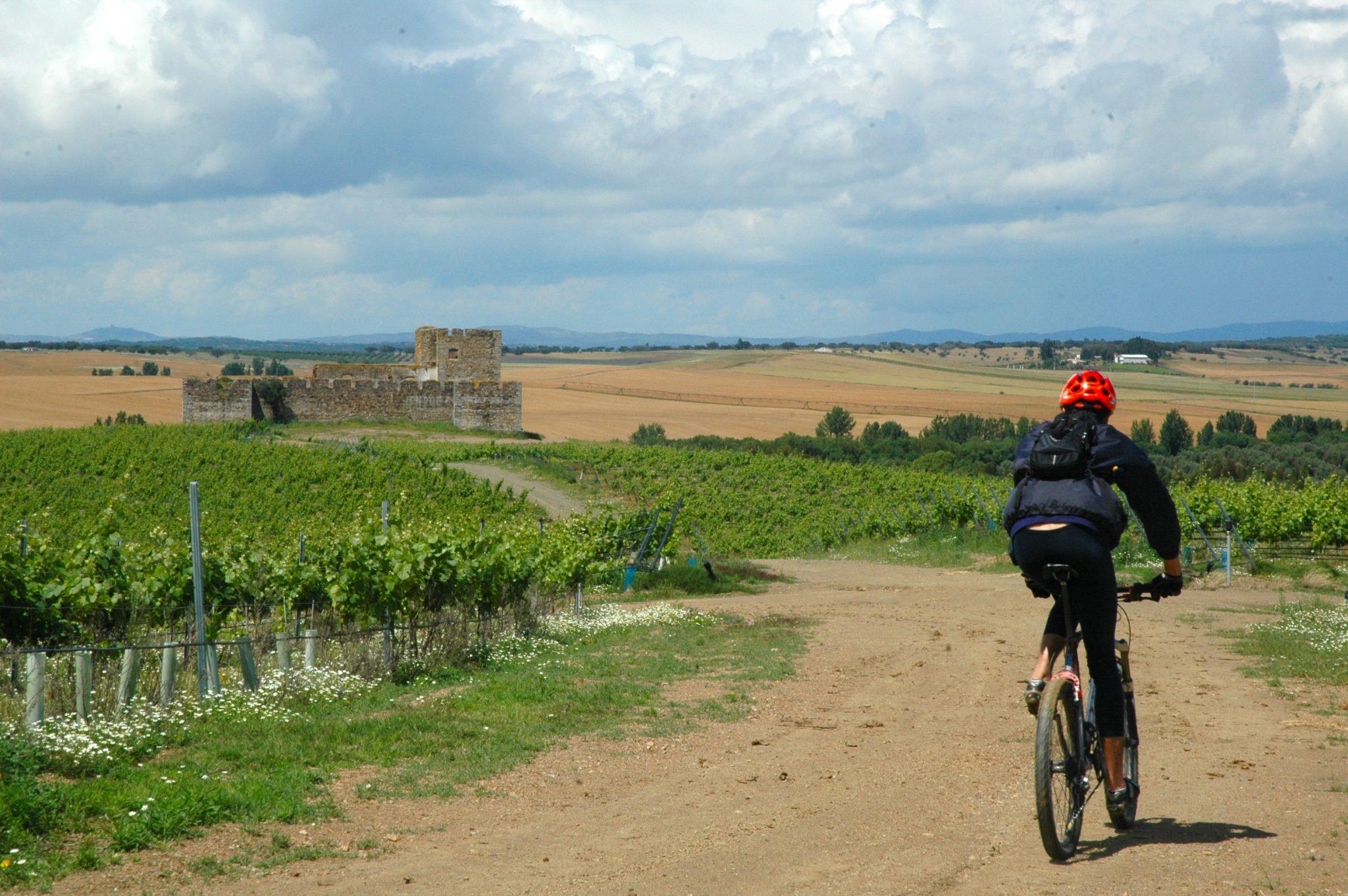 wine bike.jpg