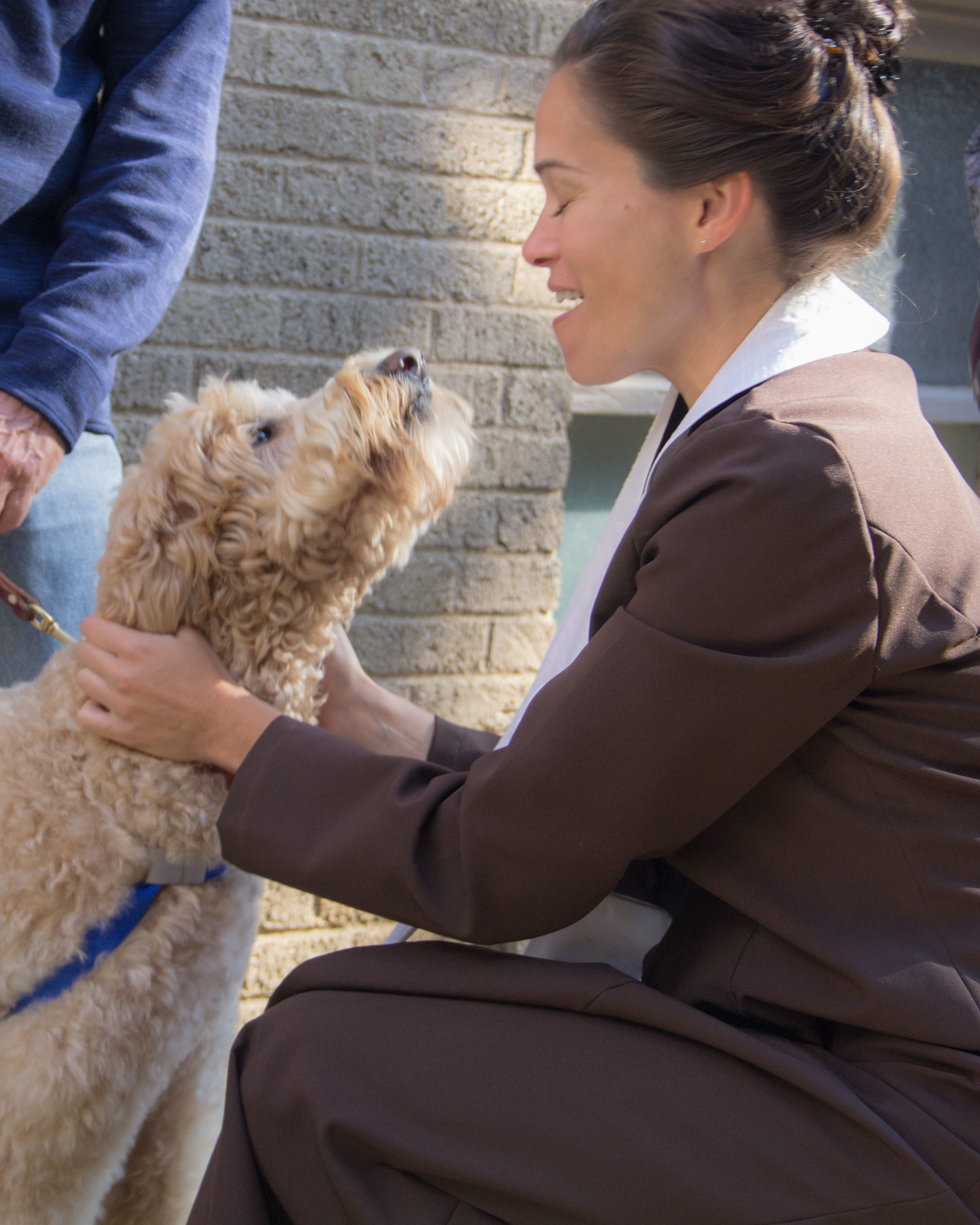 Zuly the doodle kissing the pastor